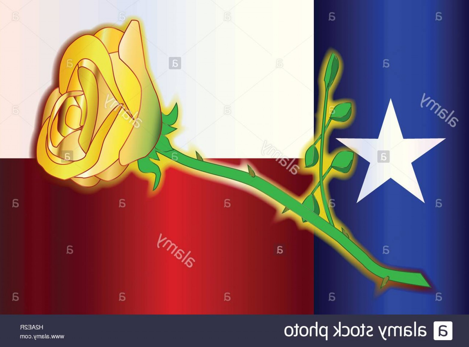 Texas Flag Vector Art: Stock Photo A Cartoon Style Yellow Rose Set On A Texas Flag Background