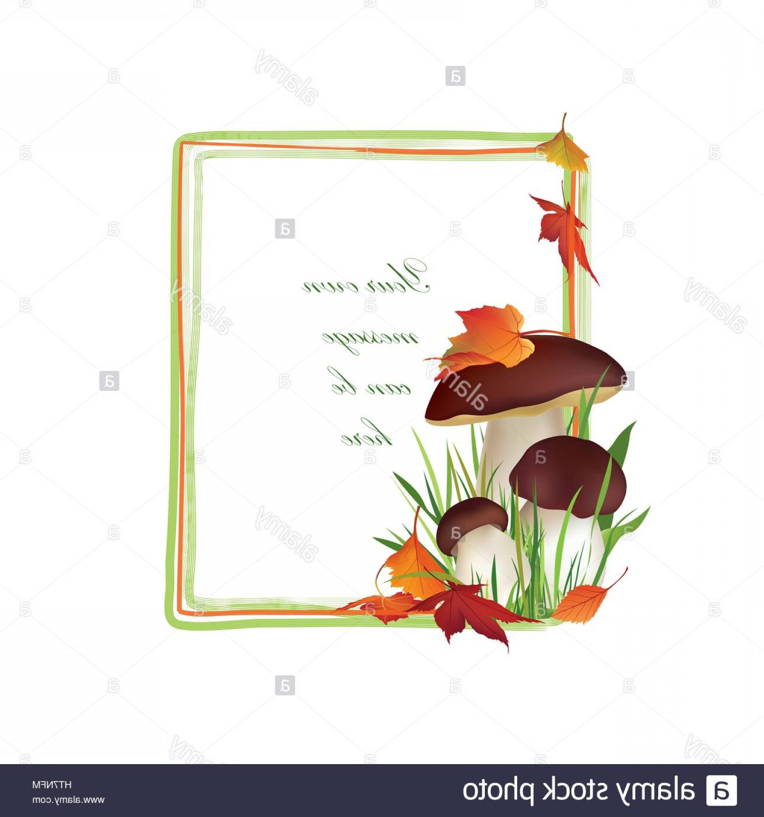 Chanterelle Mushrooms Vector: Stock Photo Autumn Frame Mushrooms Chanterelle Mushroom Vector Background With