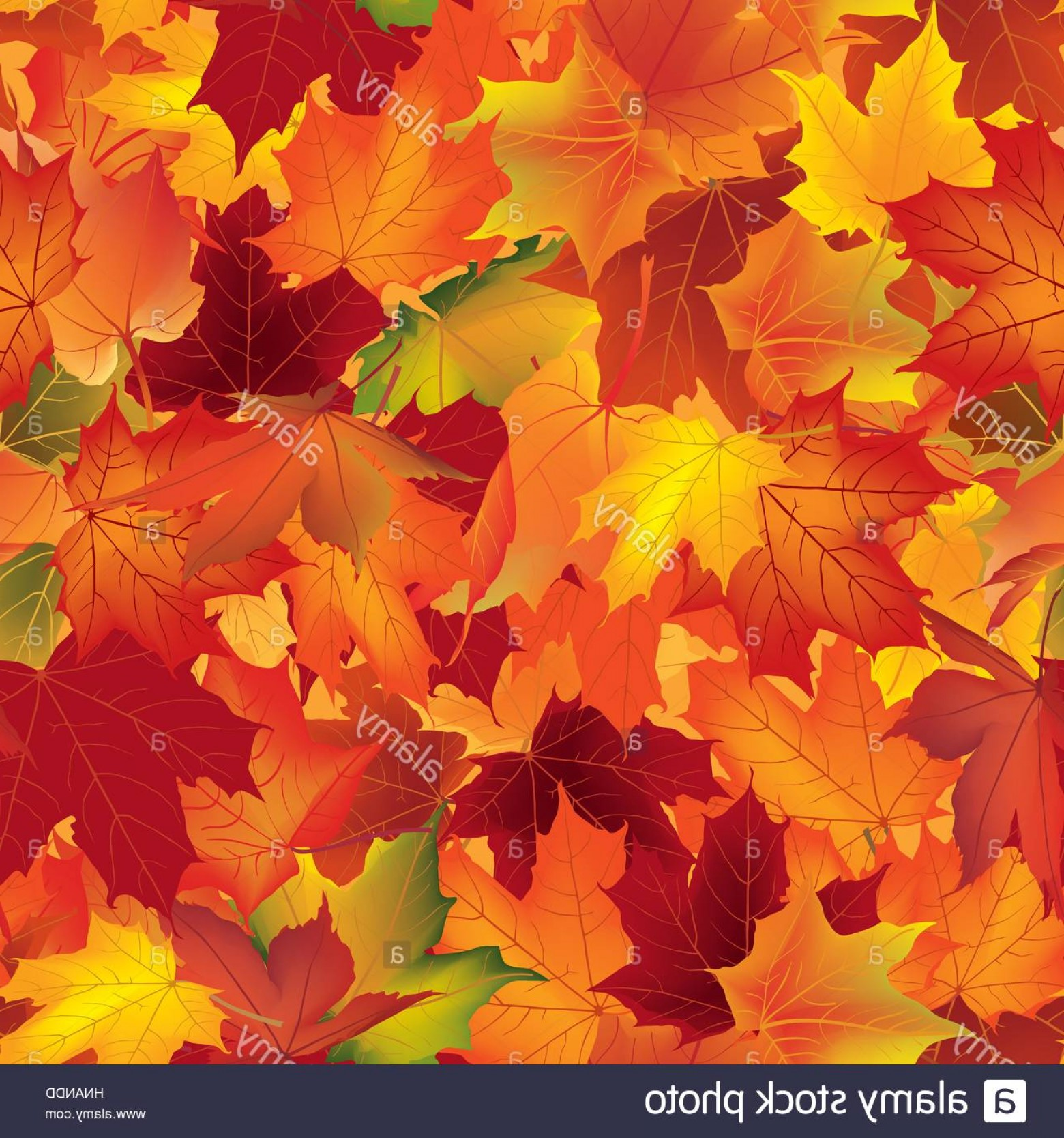 Autumn Seamless Vector: Stock Photo Autumn Texture Wallpaper With Maple Leaves Fall Seamless Pattern Nature