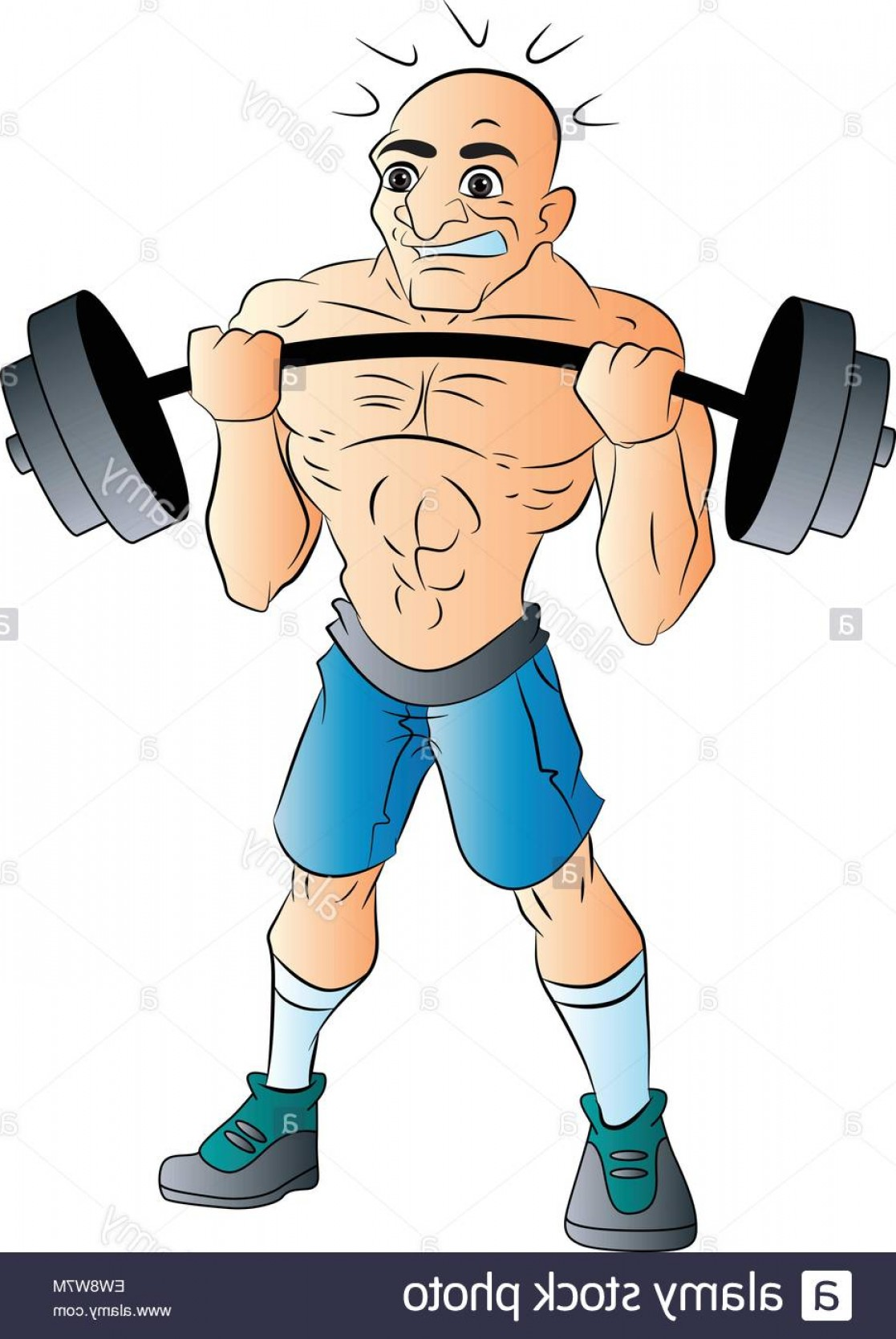 Weightlifter Vector Art: Stock Photo Bald Male Weightlifter Vector Illustration