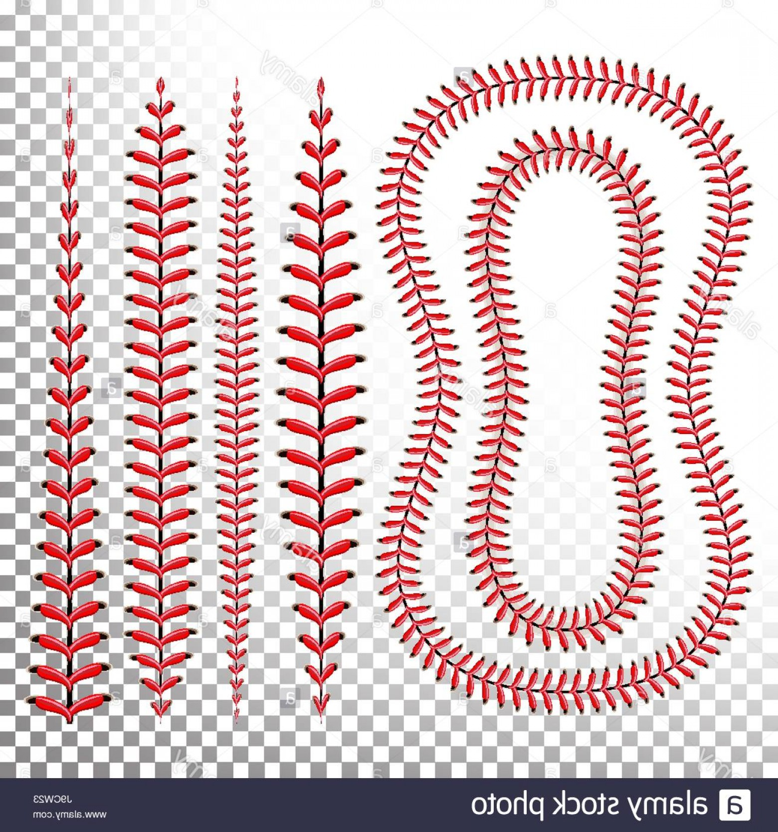 Laces Basball Vector: Stock Photo Baseball Stitches Vector Lace From A Baseball Isolated On Transparent