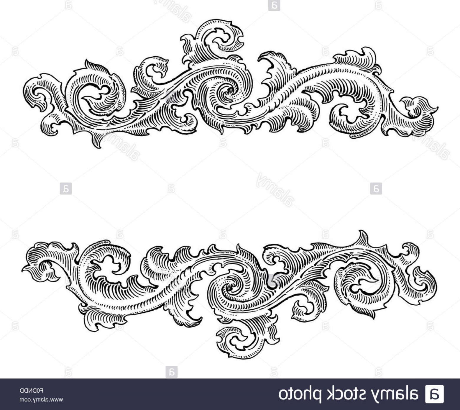 Floral Vector Calligraphy: Stock Photo Beautiful Baroque Style Decorative Calligraphy Floral Vector Ornament