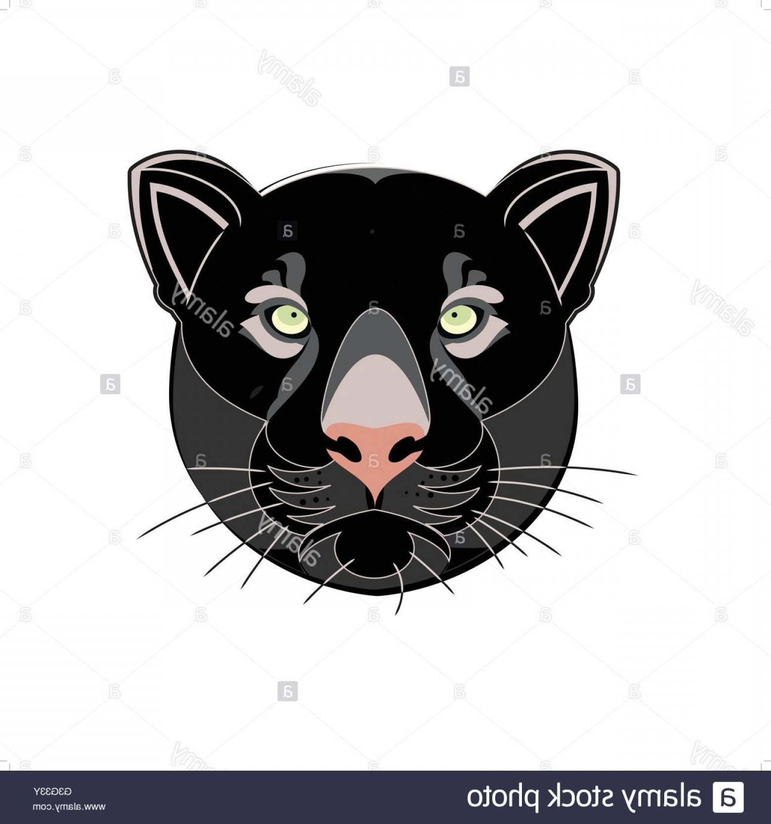 Panther Vector: Stock Photo Beautiful Black Panther Head Silhouette Vector Illustration Isolated
