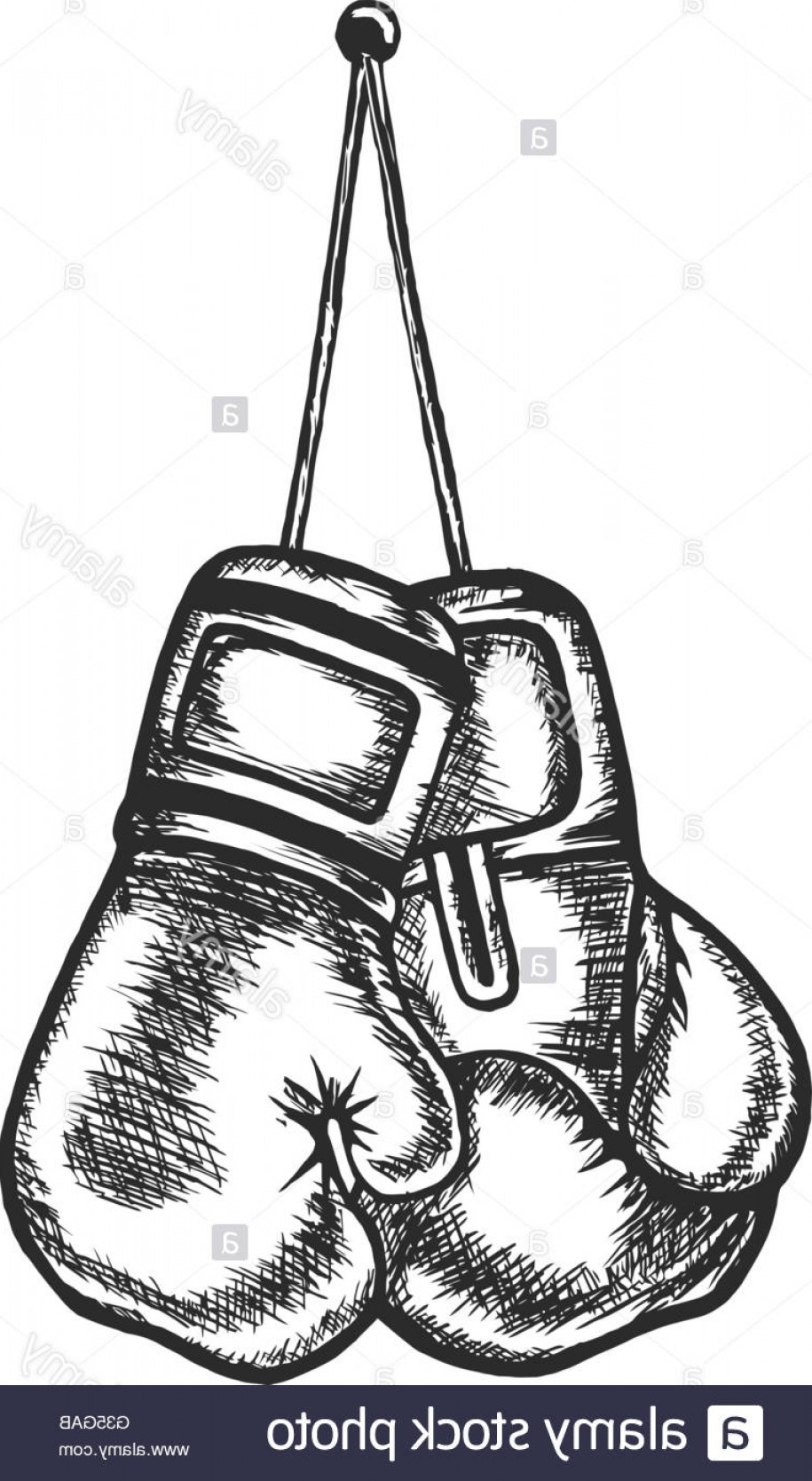 Pictures Of Boxing Gloves Vector Art: Stock Photo Boxing Sports Boxing Gloves Martial Arts