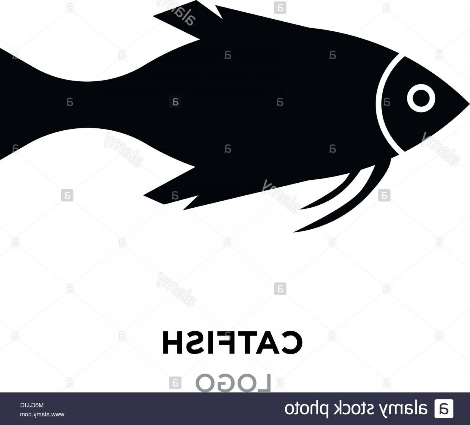 Catfish Vector Logo: Stock Photo Catfish Logo Black Catfishraccoons Head Logo For Sport Club Or Team
