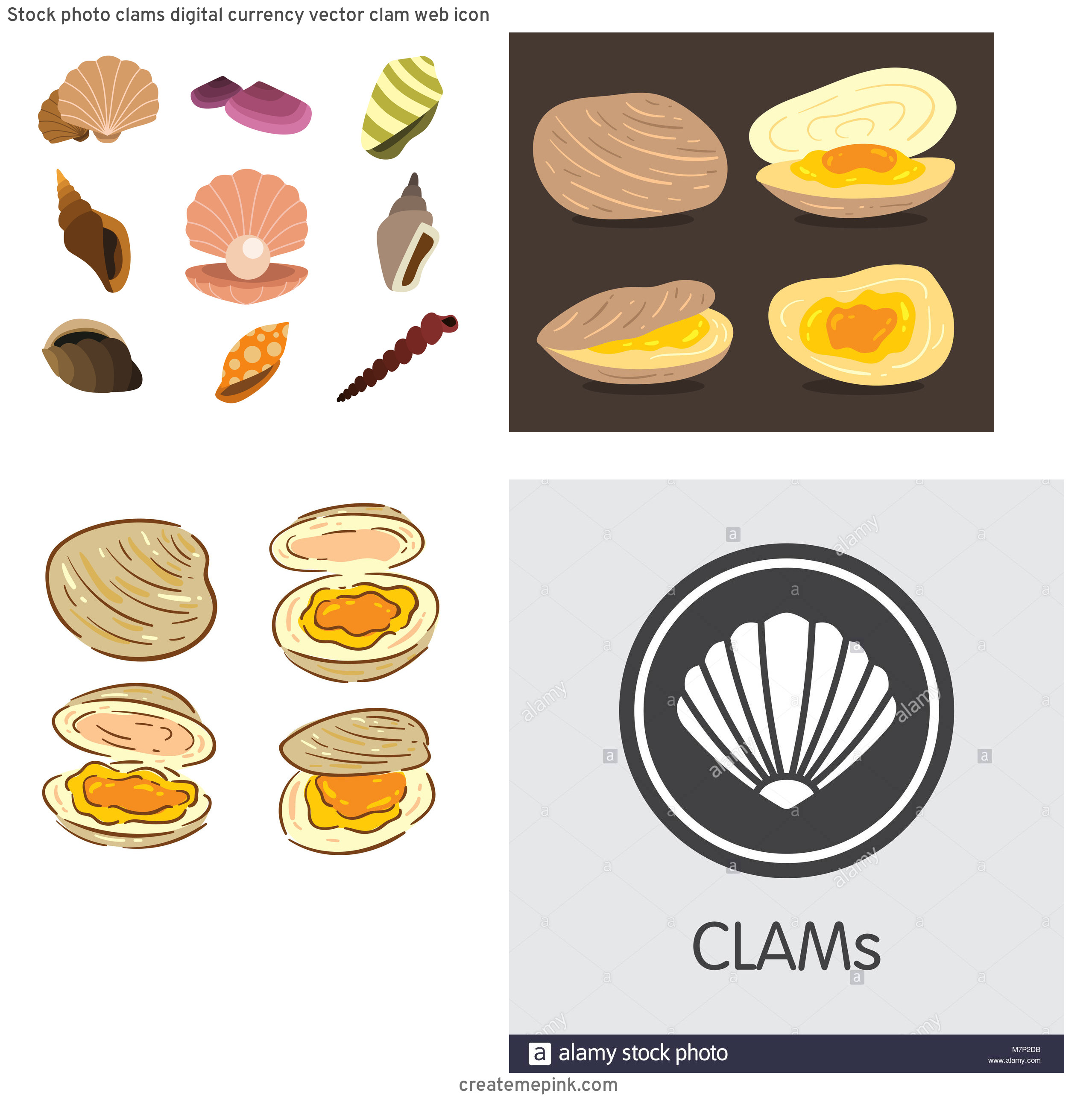 Clam Vector: Stock Photo Clams Digital Currency Vector Clam Web Icon