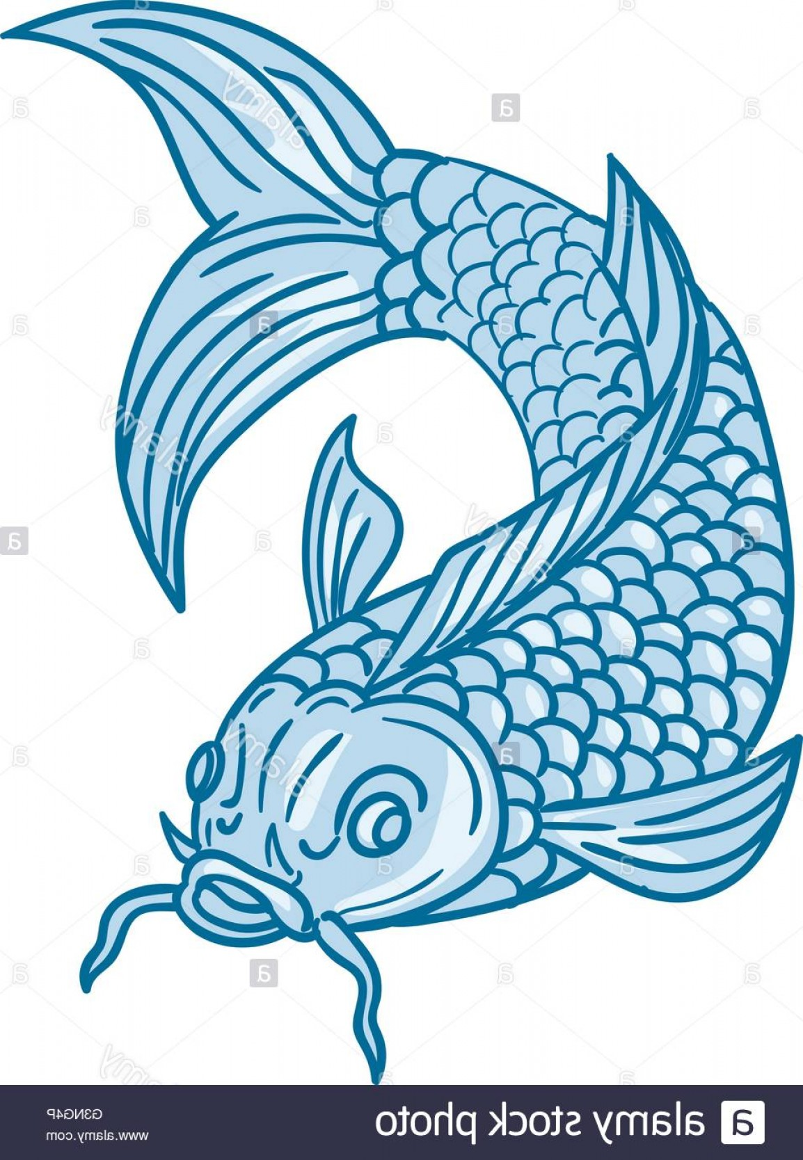 Speckled Trout Vector: Stock Photo Drawing Sketch Style Illustration Of A Trout Fish Diving Down Viewed
