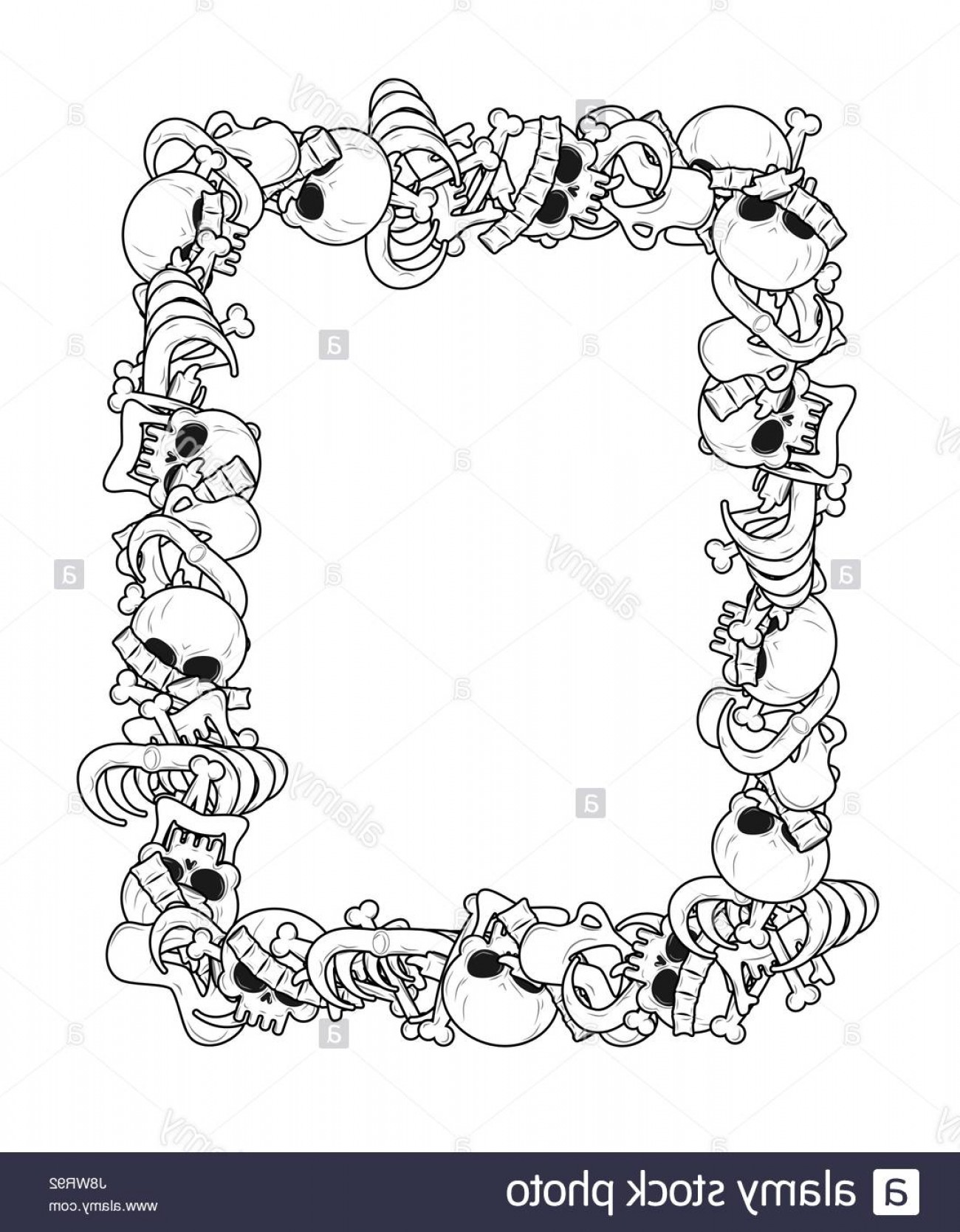 Vector Skeleton Circle Dancing: Stock Photo Frame Of Bones Anatomy Background Skeleton Template Skull And Spine