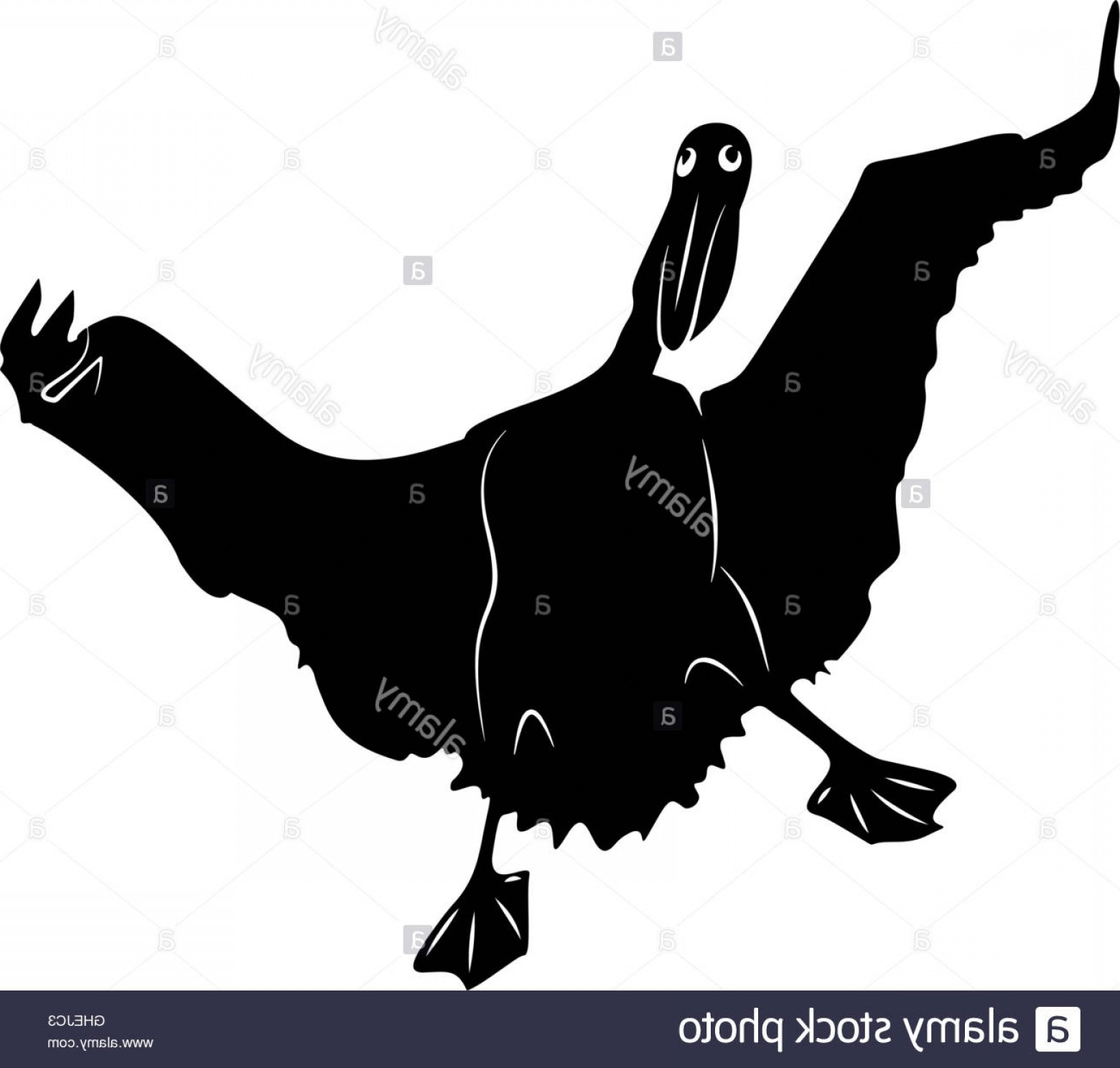 Pelican Vector Wings: Stock Photo Funny Pelican Spread Wings Vector Illustration Stylized In Black And