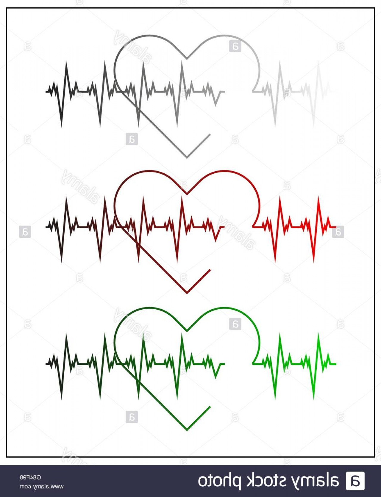 Heart Stethoscope With EKG Lines Vector: Stock Photo Graphic Illustration Of Cardiogram Or Cardiograph Electrocardiogram