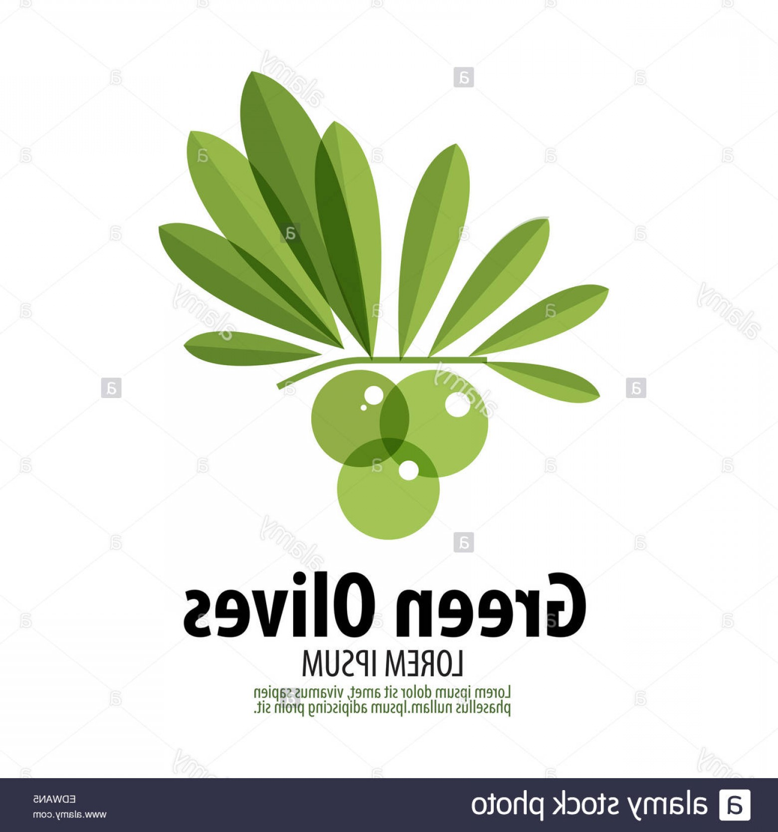 Olive Vector: Stock Photo Green Olives Vector Logo Design Template Harvest Or Food Icon