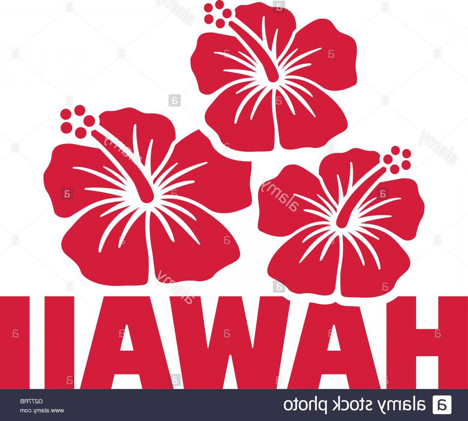 Hawaii State Flower Vector Art: Stock Photo Hawaii Word With Hibiscus Flowers