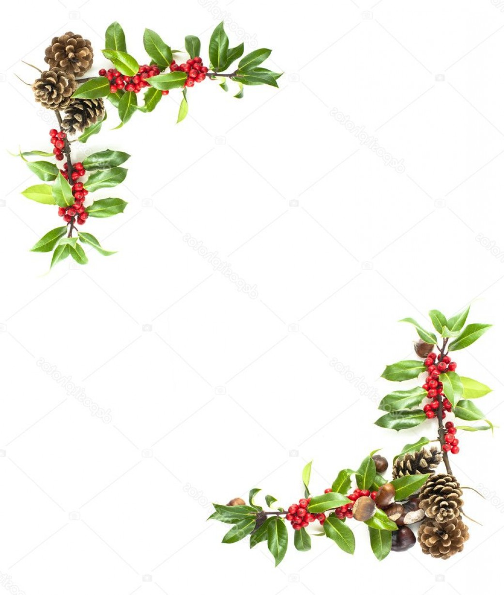 Holly Berry Vector Border: Stock Photo Holly And Red Berries Border