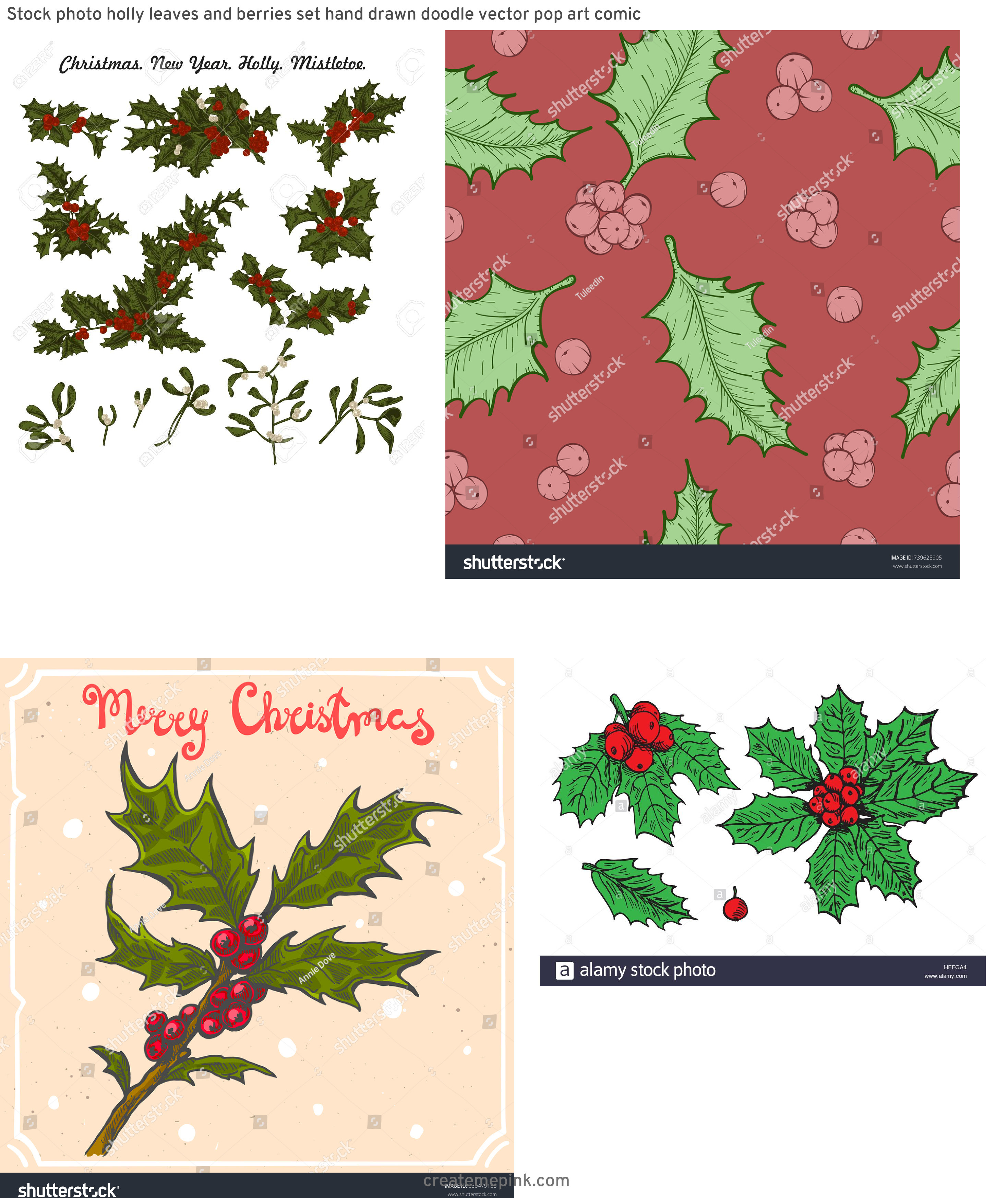 Vintage Look Holly Leaves Vector: Stock Photo Holly Leaves And Berries Set Hand Drawn Doodle Vector Pop Art Comic