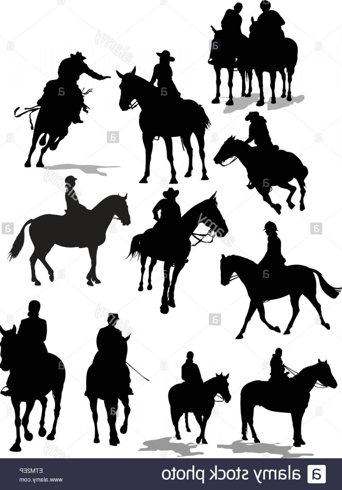 Horse And Rider Vector Art: Stock Photo Horse Riders Silhouettes Vector Illustration