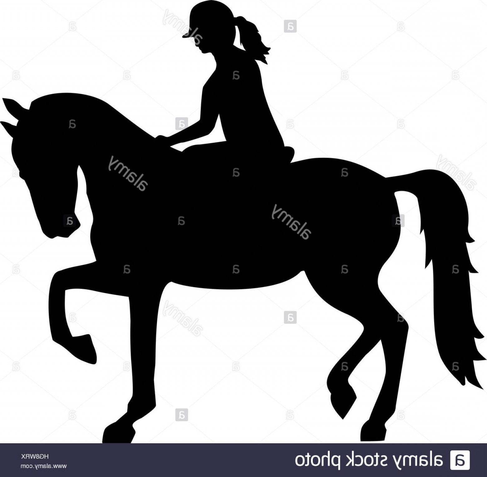 Horse And Rider Vector Art: Stock Photo Horse Riding Silhouette