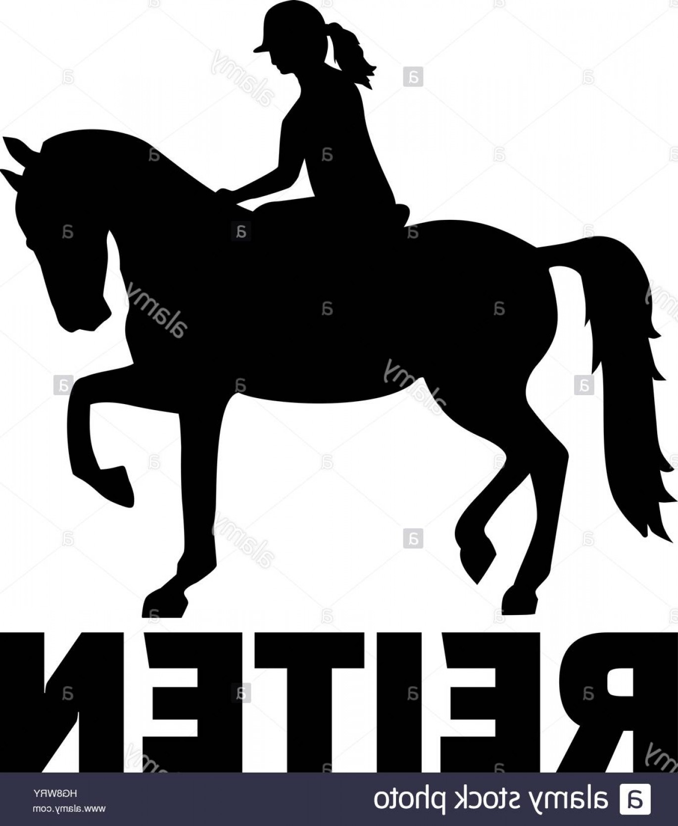 Horse And Rider Vector Art: Stock Photo Horse Riding Woman With German Title