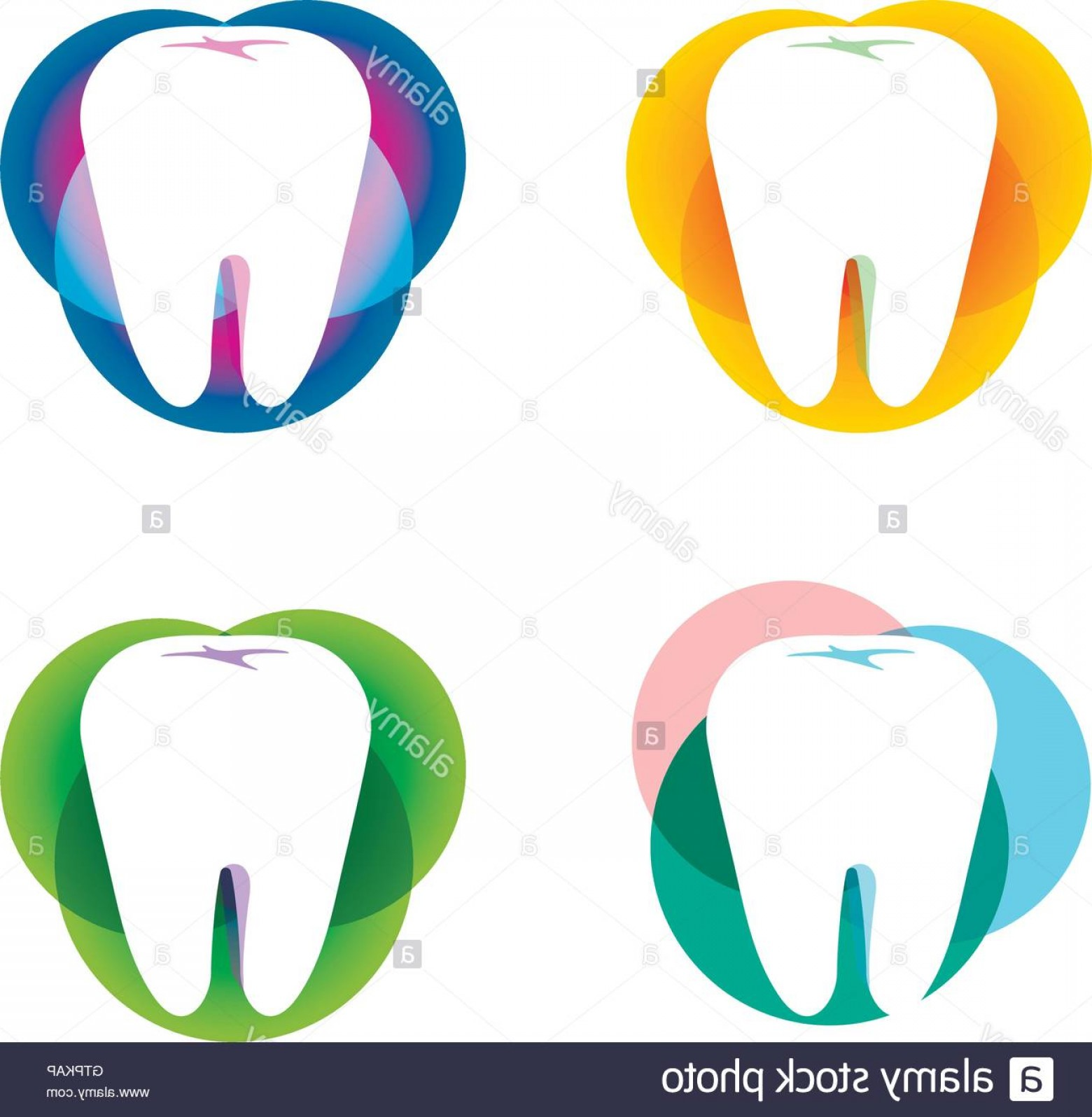 Tooth Vector Logo: Stock Photo Isolated White Tooth Vector Logo Set Round Shape Tooth Hygiene Logotype