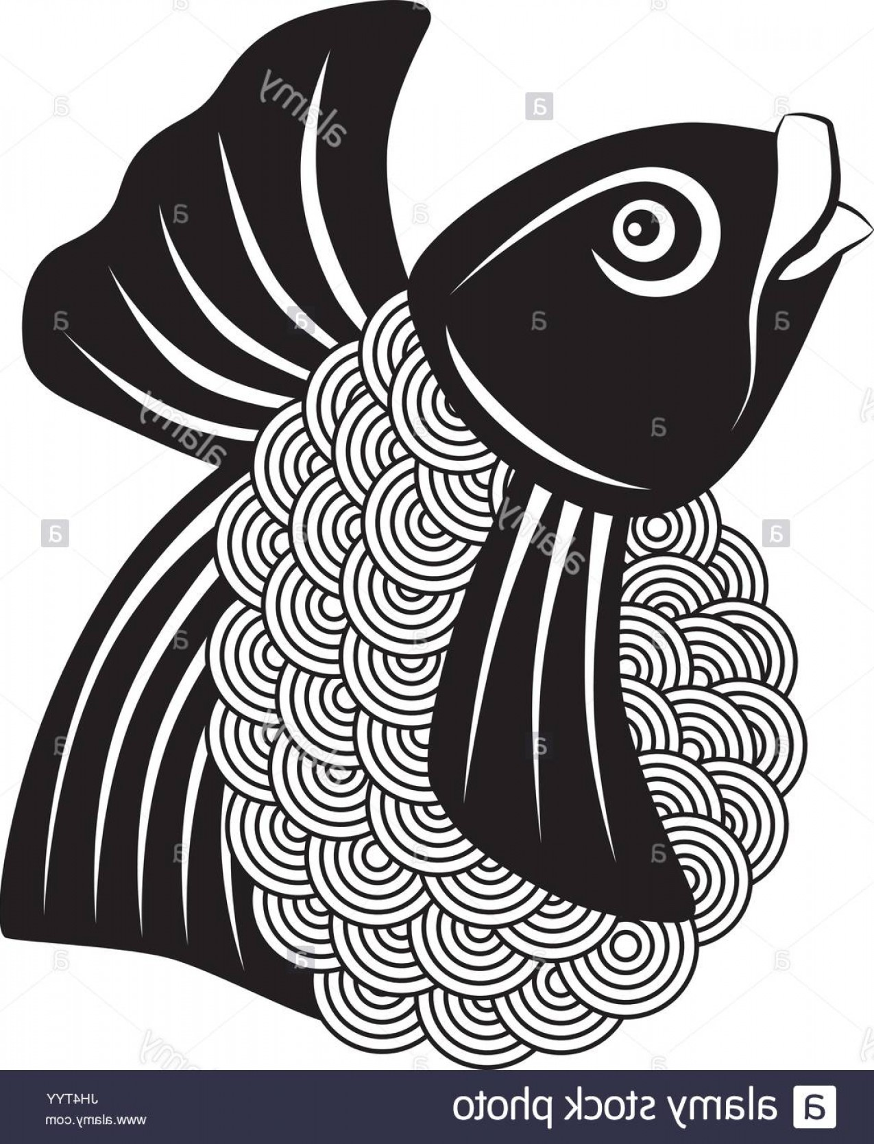 Black And White Koi Vector: Stock Photo Japanese Koi Fish Abstract Black And White Outline Illustration
