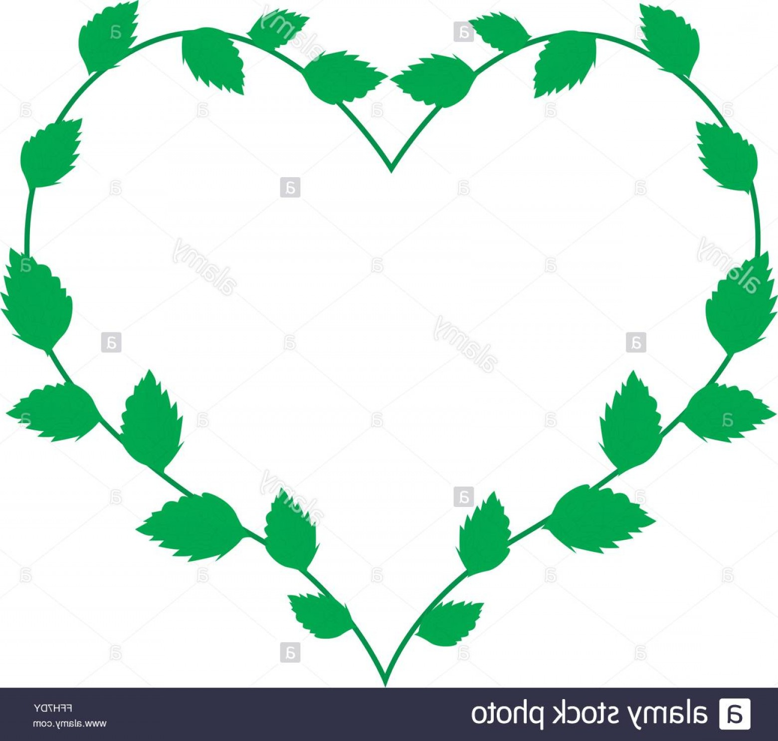 Green Vine Vector: Stock Photo Love Concept Illustration Of Heart Shape Wreath Made Of Green Vine