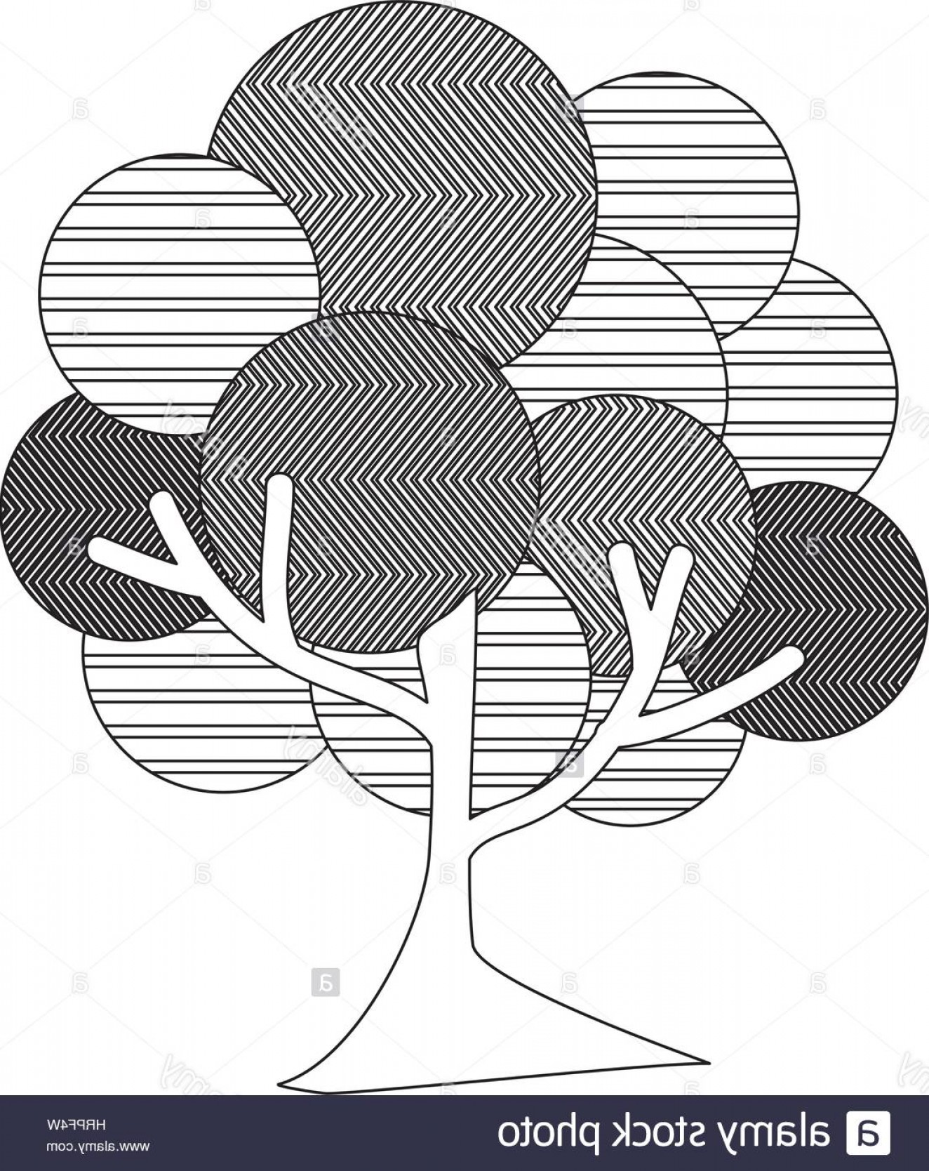 Tree Abstract Line Art And Vector: Stock Photo Monochrome Silhouette Leafy Tree Plant With Abstract Lines And Thin