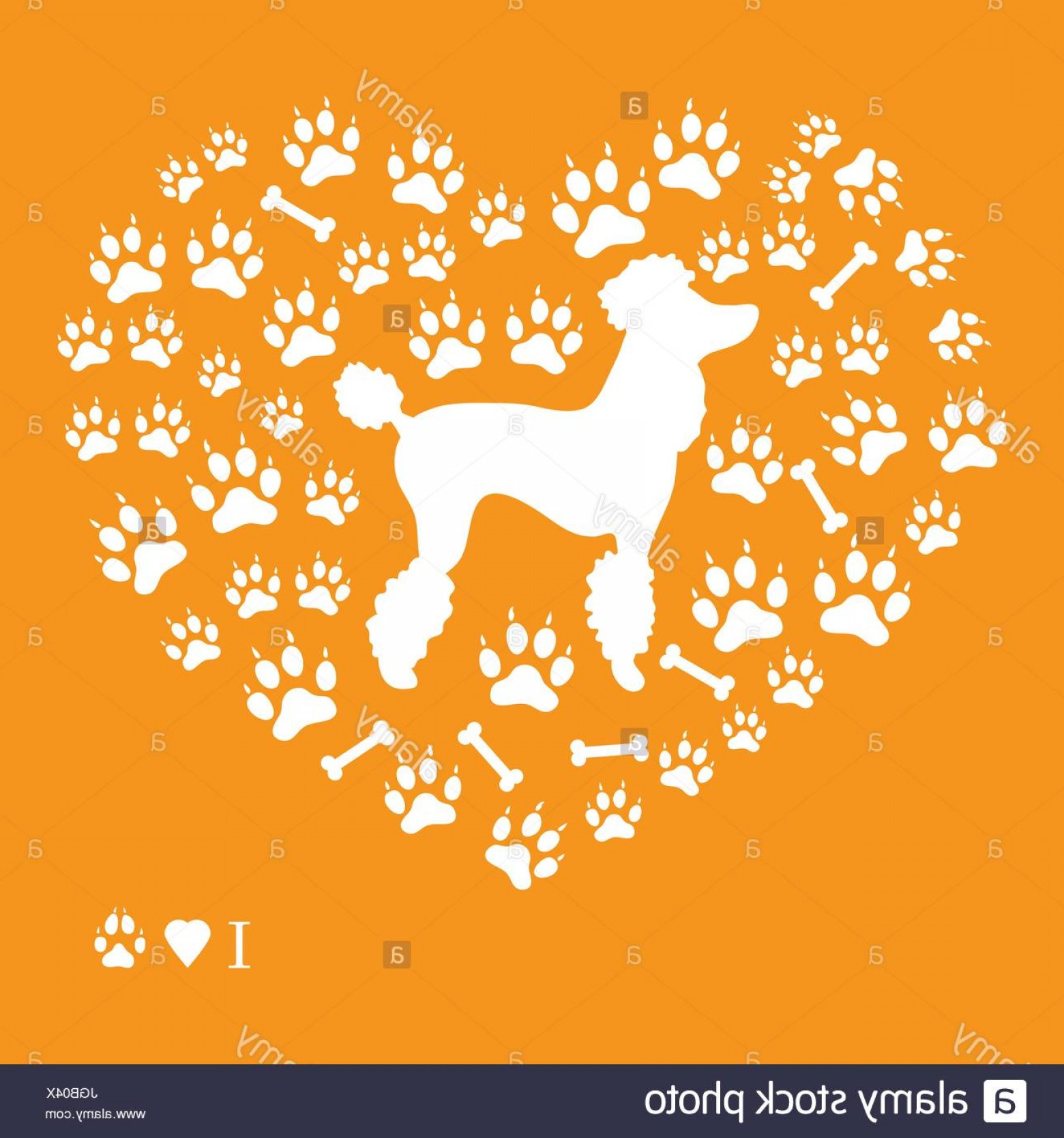 Bone Shaped Dog Tags Vector Art: Stock Photo Nice Picture Of Poodle Silhouette On A Background Of Dog Tracks And
