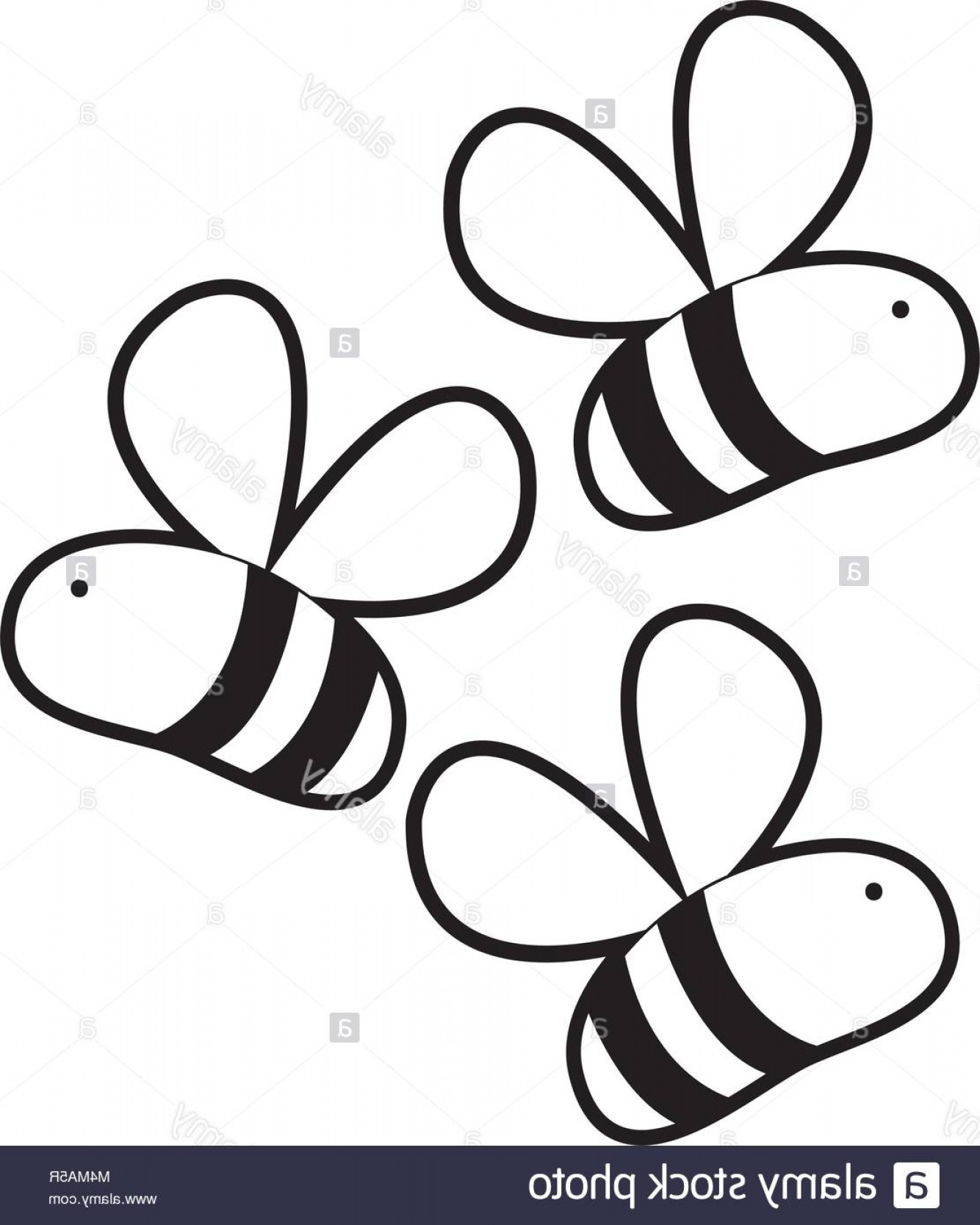 Bee Outline Vector: Stock Photo Outline Cute Bees Insect Animal Flying