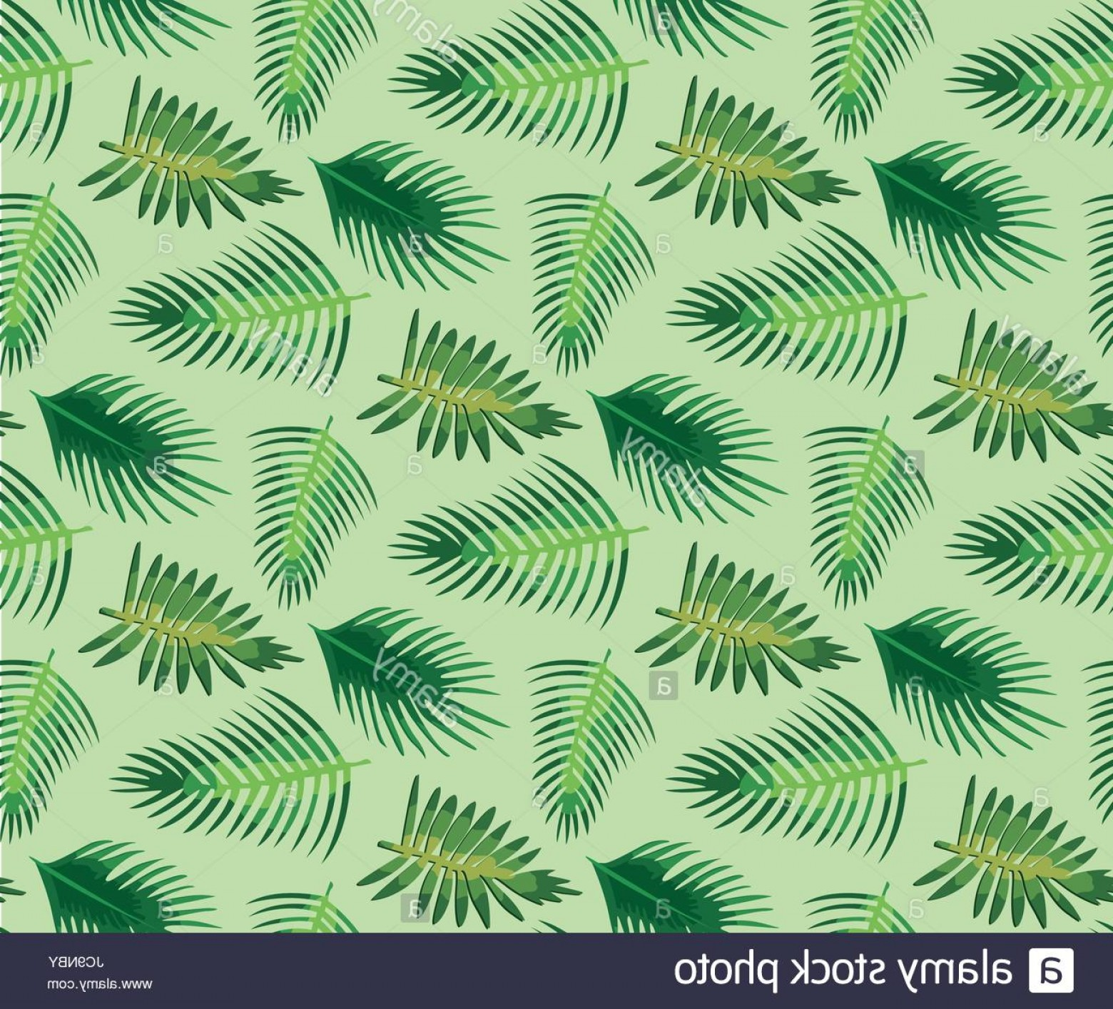 Hawaiian Pattern Vector: Stock Photo Palm Tree Different Set Leaf Leaves Seamless Pattern Background Texture