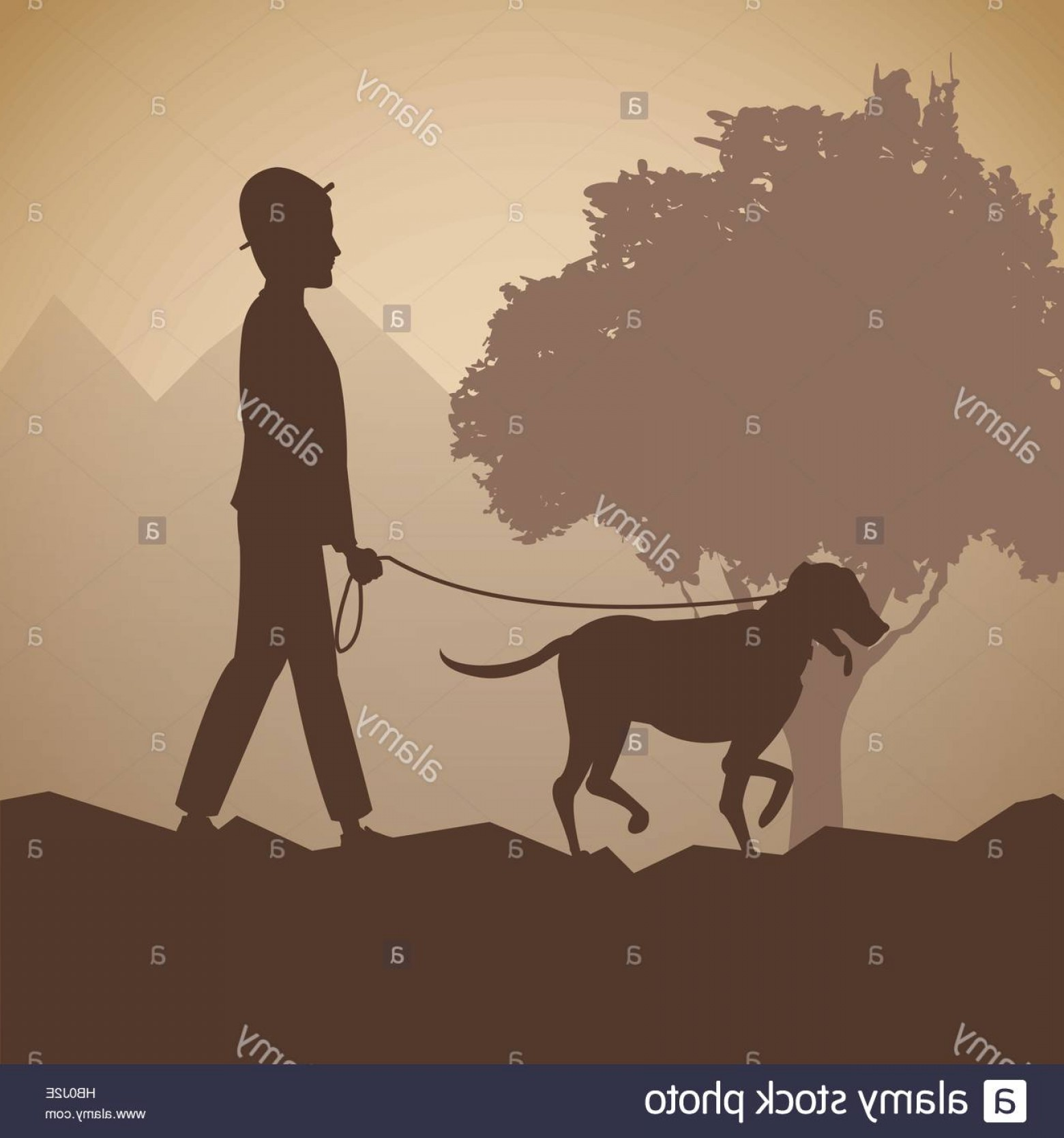 Vector Silhouette Dog Walk: Stock Photo Silhouette Man And Dog Walk Forest Background