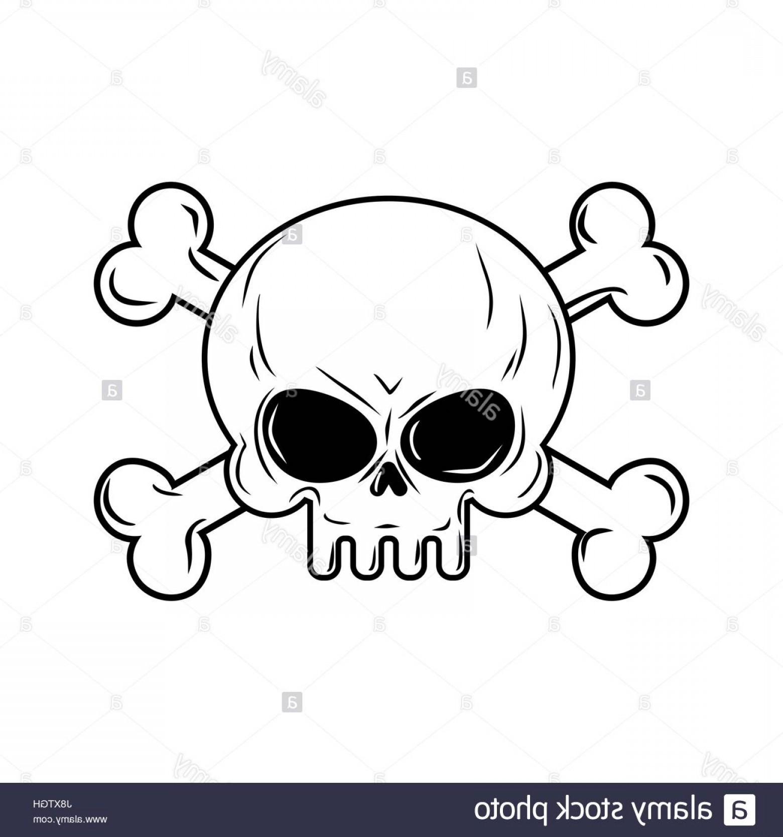 Skull ND Crossbones Vector: Stock Photo Skull With Bones Pirates Sign Vector Illustration Head Skeleton On