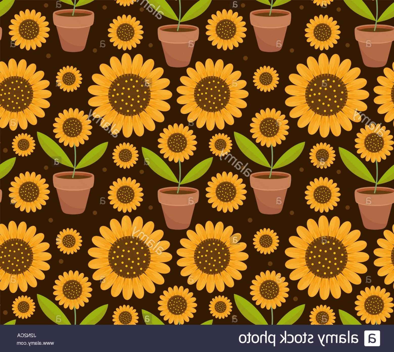 Sunflower Vector Pattern: Stock Photo Summer Seamless Pattern With Yellow Sunflower Flowers Village Endless