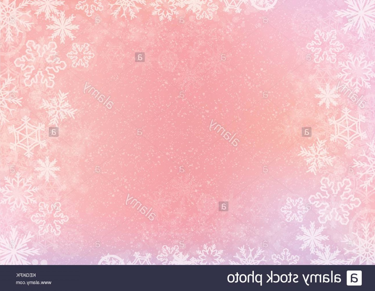 Snowflake Border Vector Art: Stock Photo The Pink Elegant Winter Background With The Snowflake Border