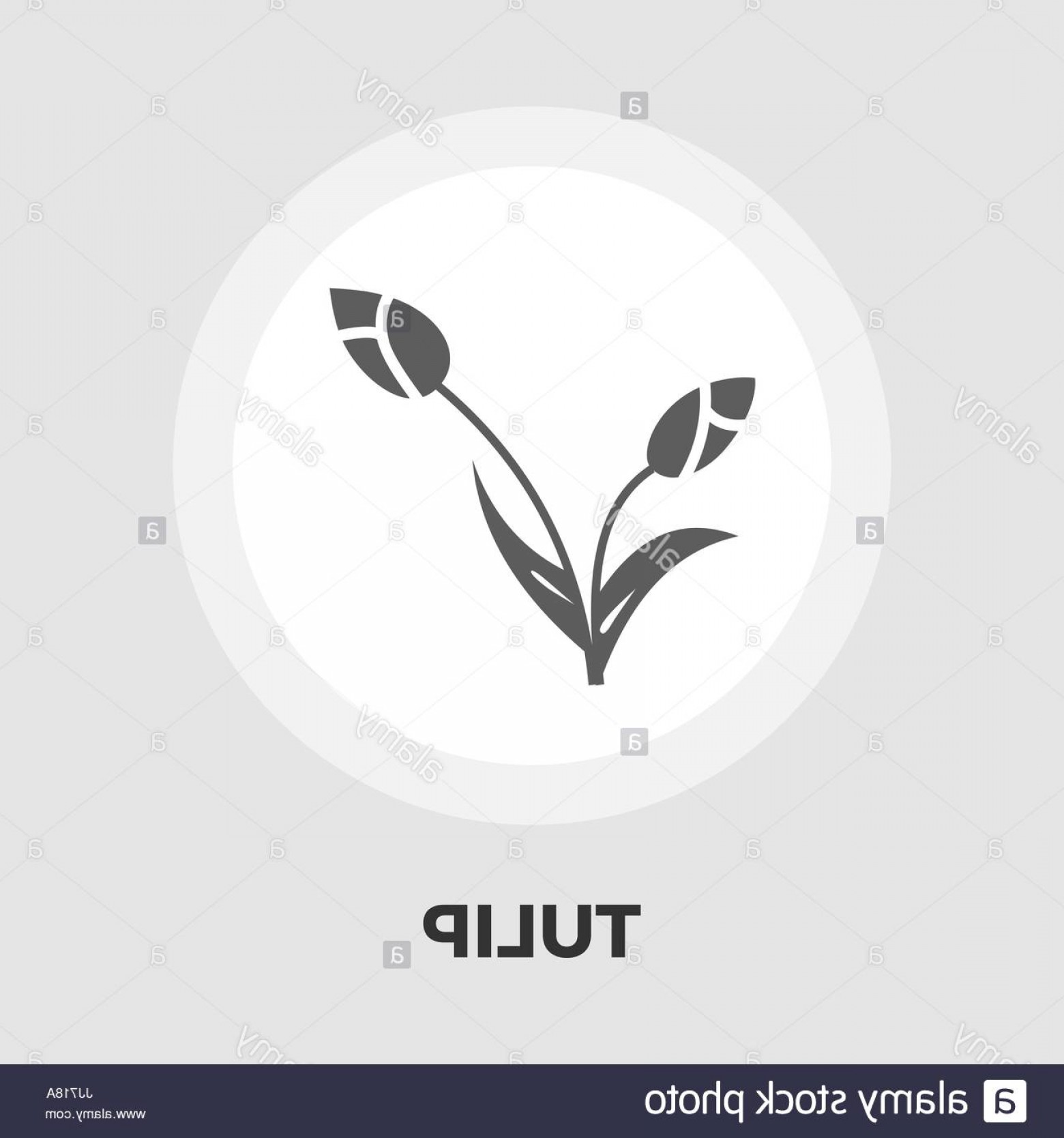 Tulip Icon Vector: Stock Photo Tulip Icon Vector Flat Icon Isolated On The White Background Editable