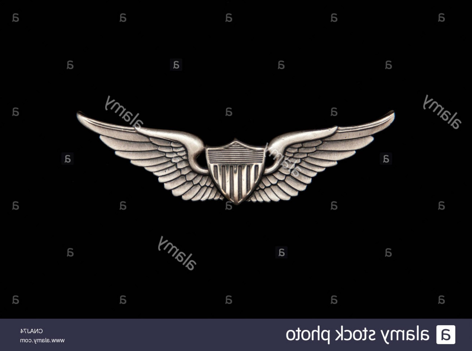 Army Aviator Wings Vector: Stock Photo Us Army Aviator Wings