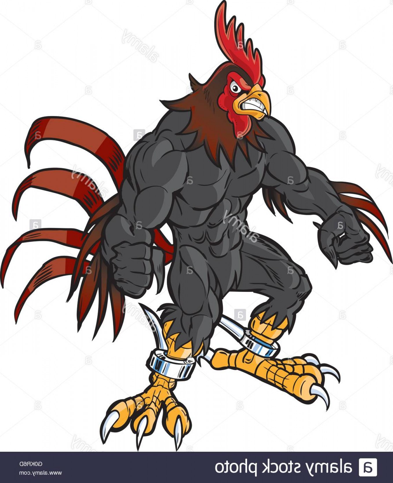 Spurs Clip Art Vector: Stock Photo Vector Cartoon Clip Art Illustration Of An Angry Muscular Rooster