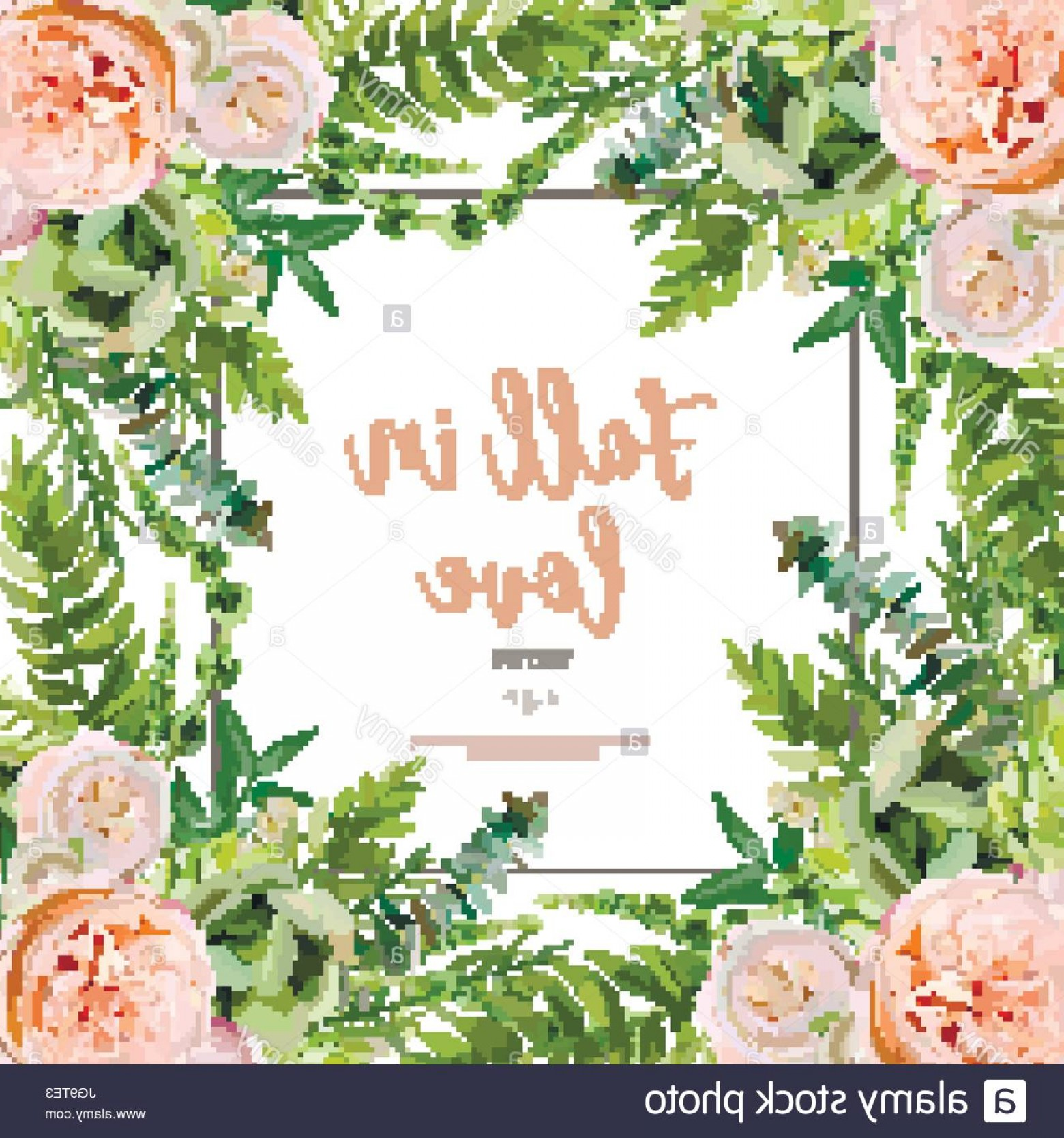 Cactus And Flower Vector: Stock Photo Vector Floral Design Square Card Design Soft Succulent Cactus Flower