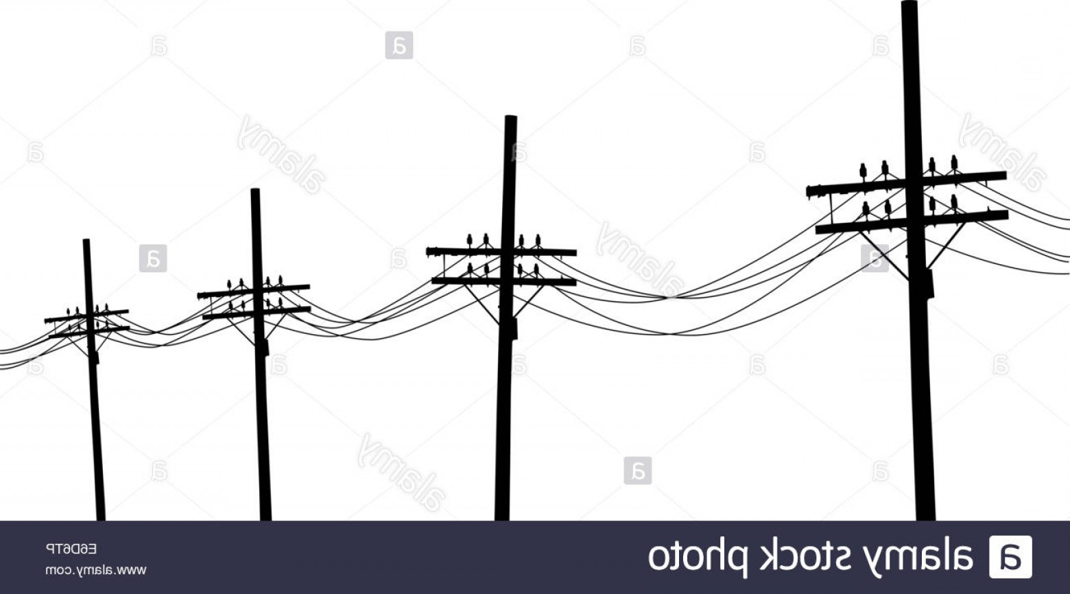 Vector Pole: Stock Photo Vector Illustration Of A Line Of Utility Poles In Silhouette