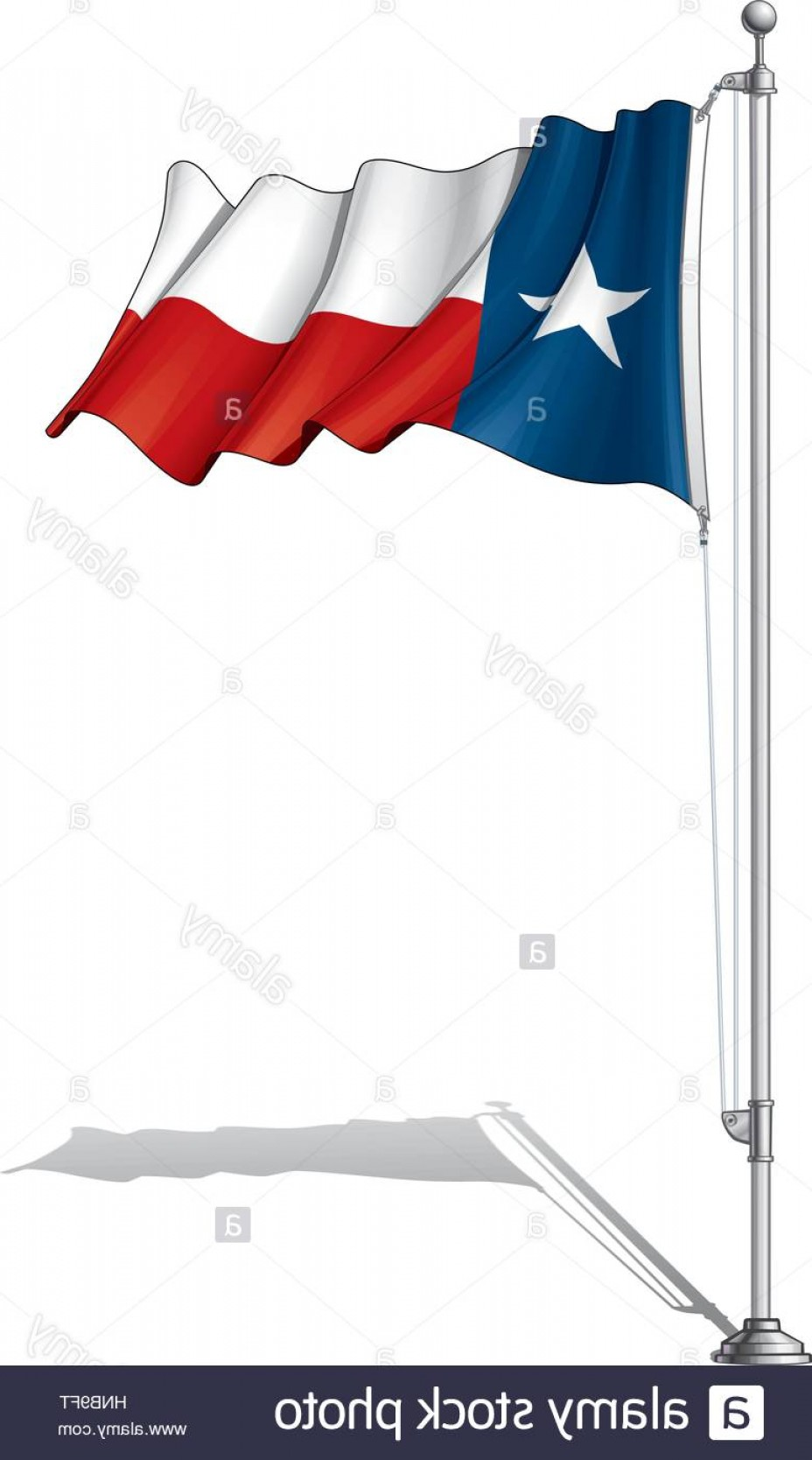 Texas Flag Vector Art: Stock Photo Vector Illustration Of A Waving Texas Flag Fasten On A Flag Pole Flag