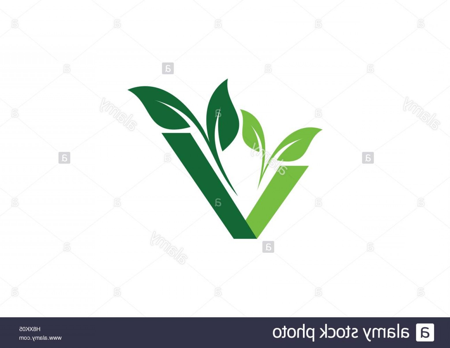 V Logo Vector: Stock Photo Vegan Plant Ecology Logo Green Natural Vegetable Logotype Natural