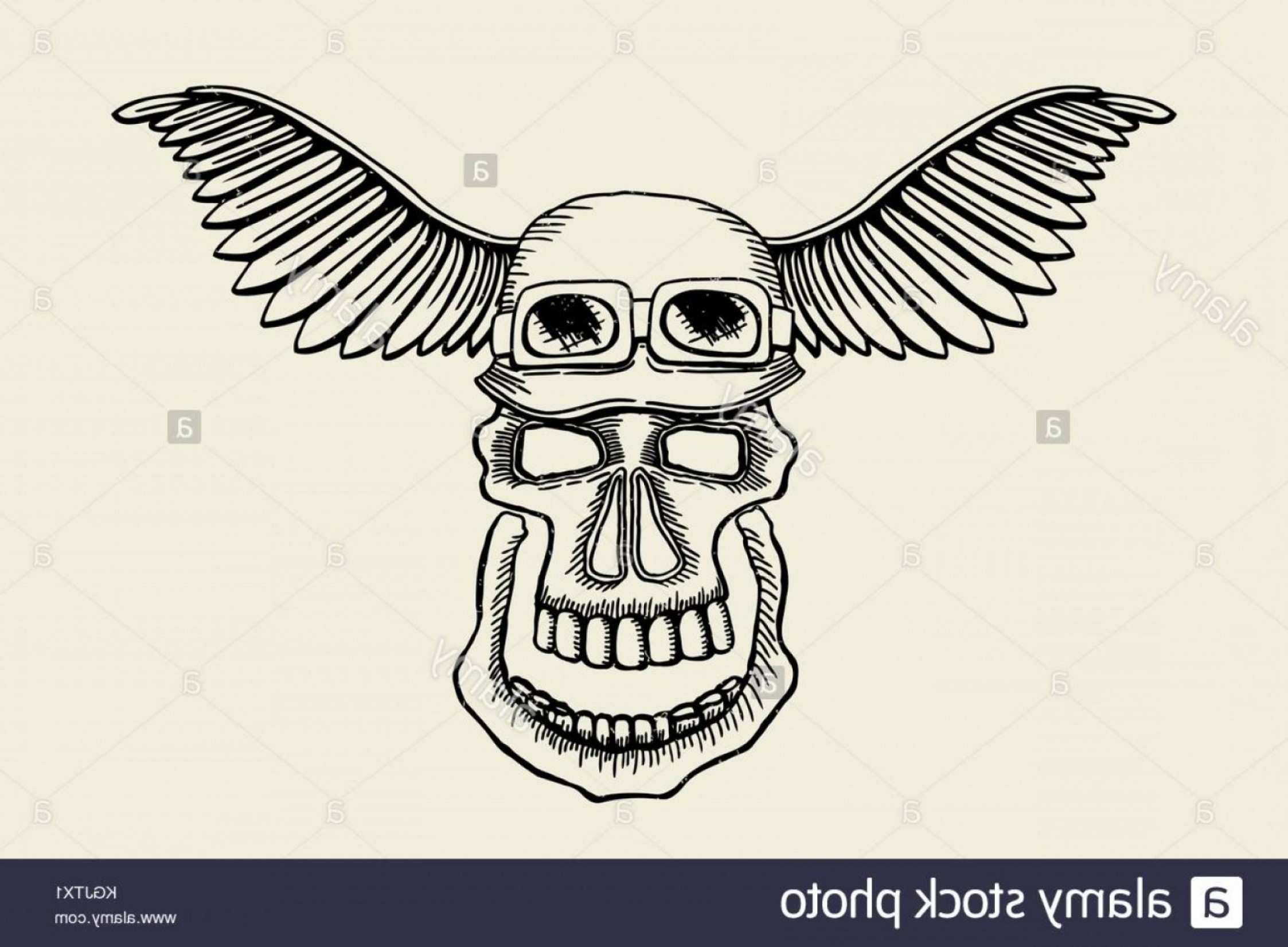 Harley -Davidson Skull Logo Vector: Stock Photo Vintage Skull Grunge Biker Motorcycle Vector Label Skull In Helmet