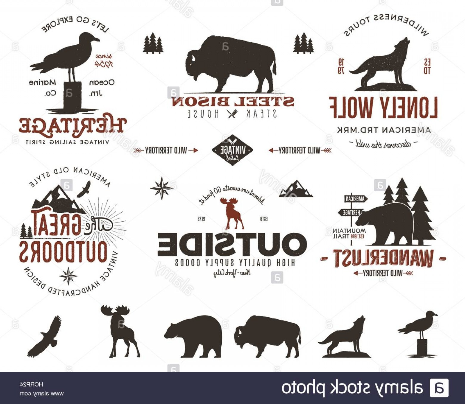 Wildlife Vector Logo Badge: Stock Photo Wild Animal Badges Set And Outdoors Activity Insignias Retro Illustration