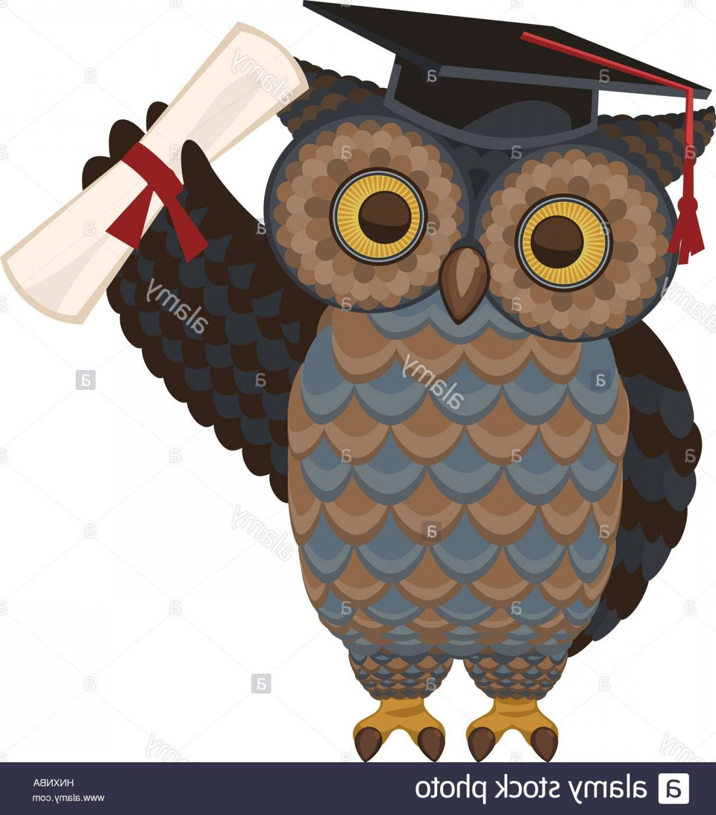 Standing Diploma Vector: Stock Photo Wise Owl Standing With Diploma And Hat Vector Illustration