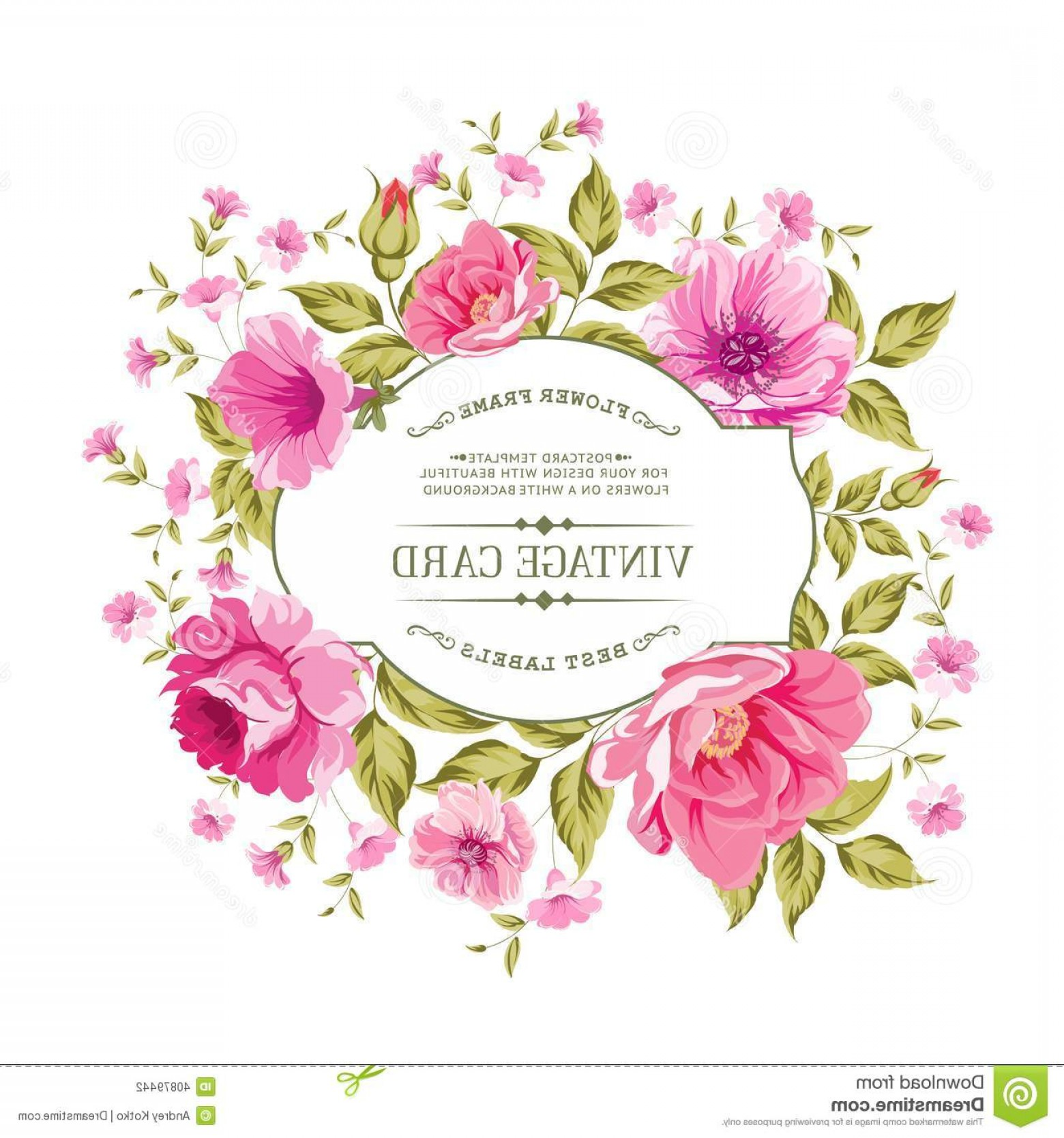Pink Peony Vector: Stock Photography Luxurious Color Peony Pattern Vintage Card Vector Illistration Image