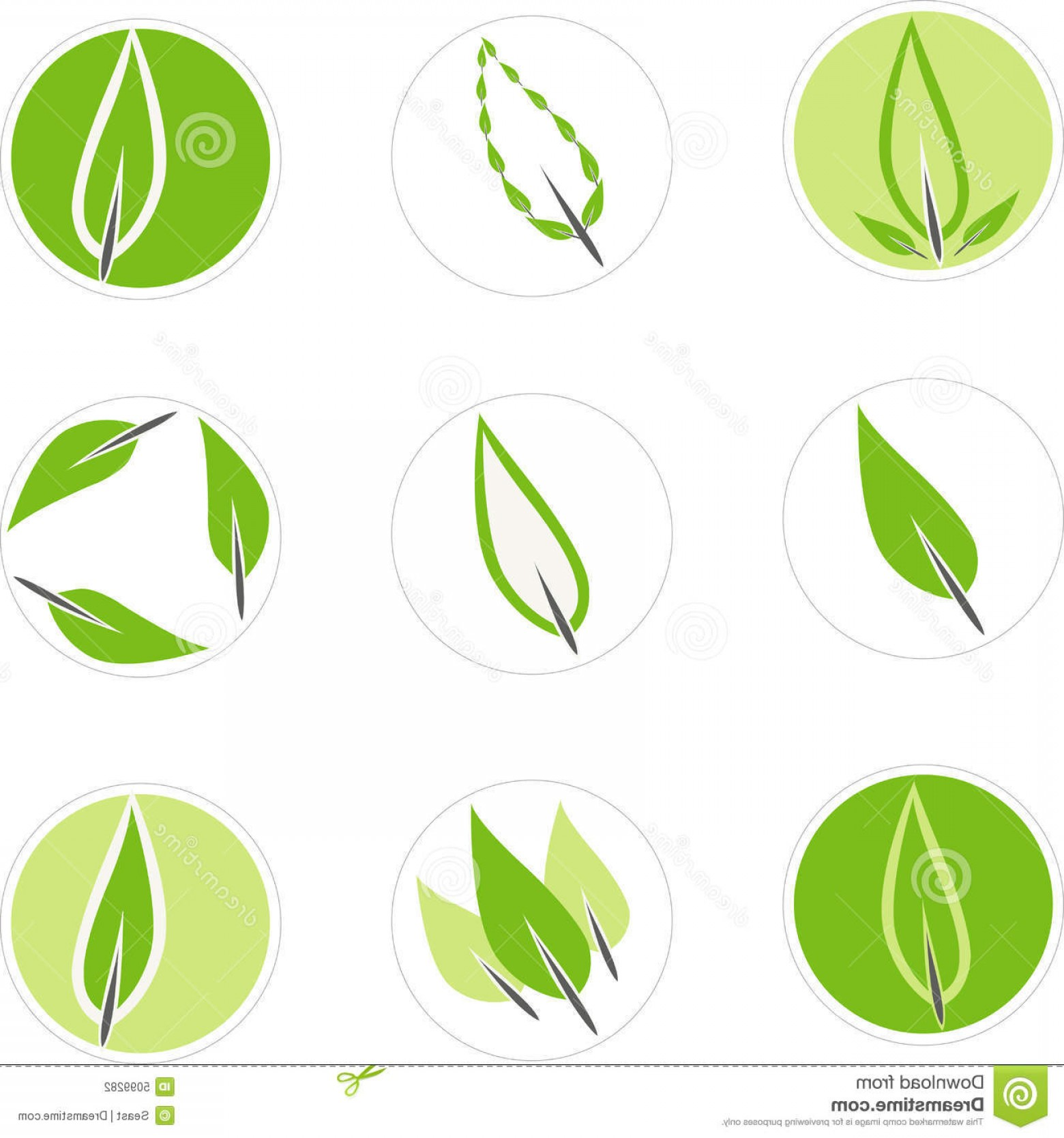 Vector Leaf Graphicd: Stock Photography Set Leaf Graphics Image