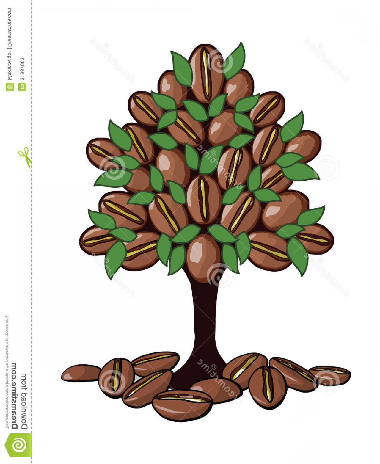 Coffee Tree Vector: Stock Photos Coffee Tree Which Grow Beans Green Leaves Vector Image