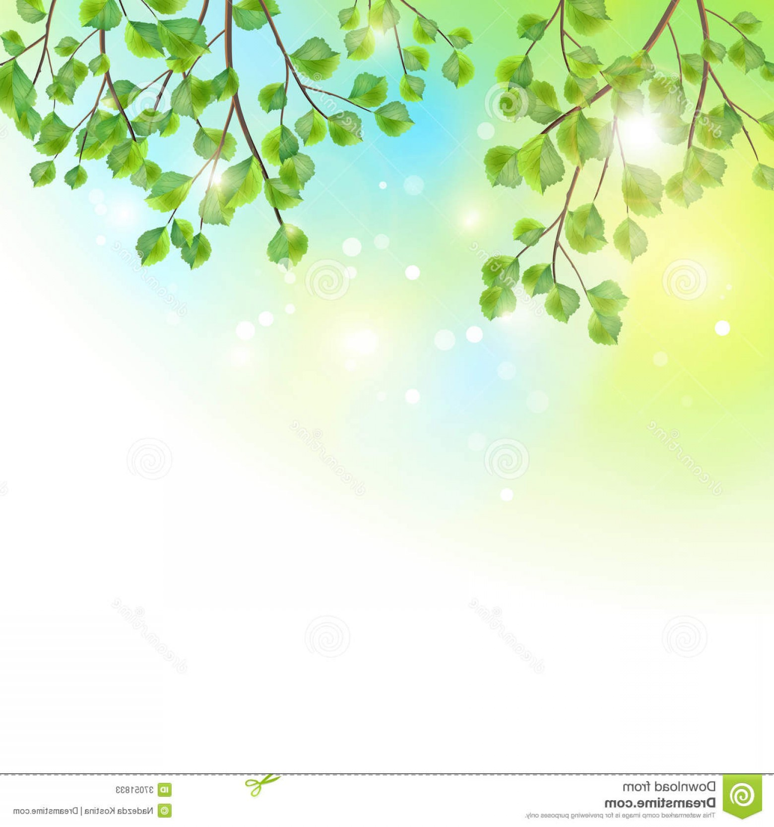 Tree Branch Vector Background: Stock Photos Green Leaves Tree Branches Vector Background Summer Birch Border Foliage Colorful Sunny Sky Backdrop Image