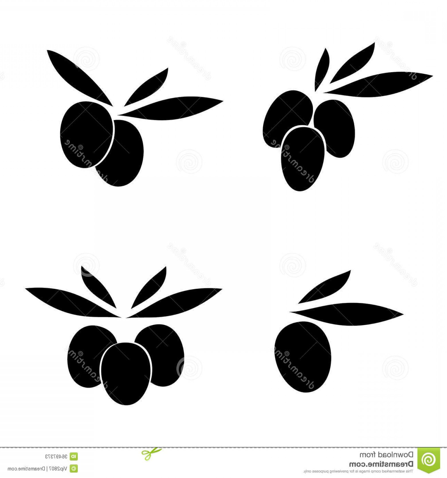 Olive Vector: Stock Photos Olive Leaves Vector Label Set Image