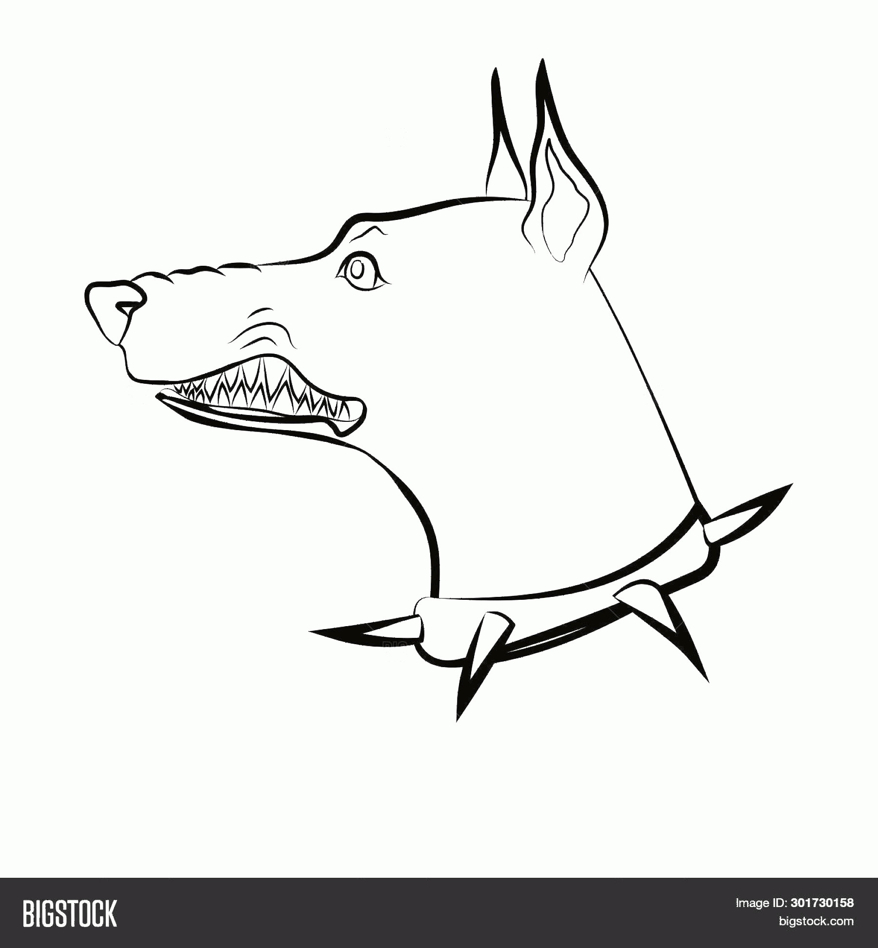 Angry Dog Vector Black And White: Stock Vector Angry Dog Doberman With Grin Dog With Spike Collar Vector Linear Drawing