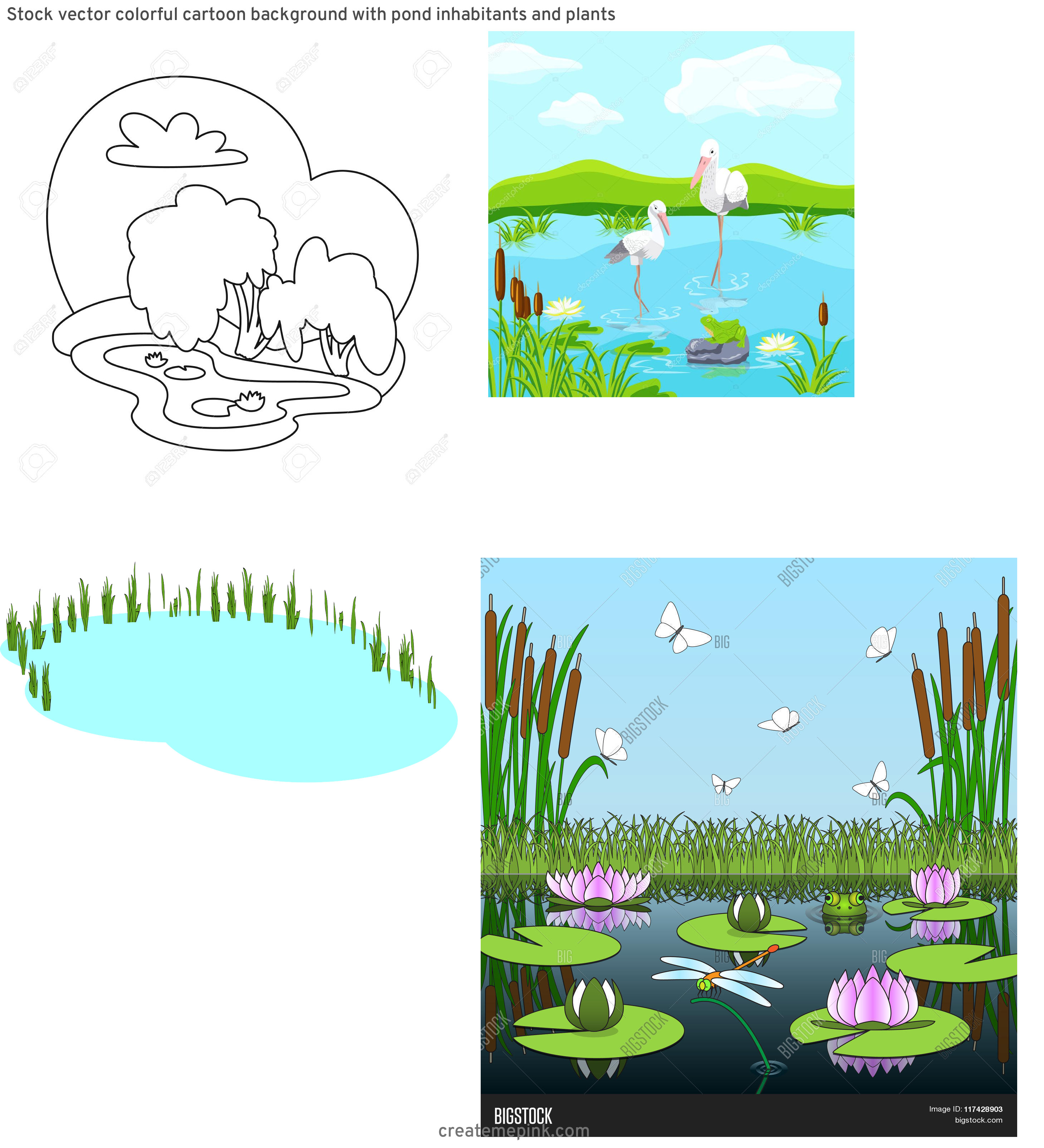 Vector Wetland: Stock Vector Colorful Cartoon Background With Pond Inhabitants And Plants