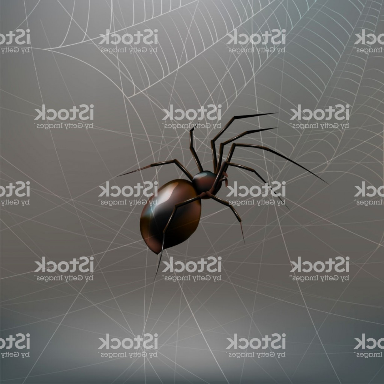 Vector Insect Light: Stock Vector Illustration Realistic Black Spider Light Gray Background Eps Gm